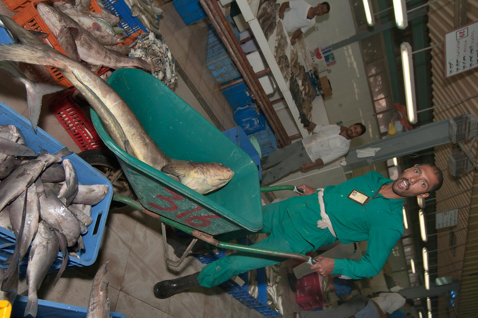 Worker carrying a large fish in Central Fish Market. Doha, Qatar