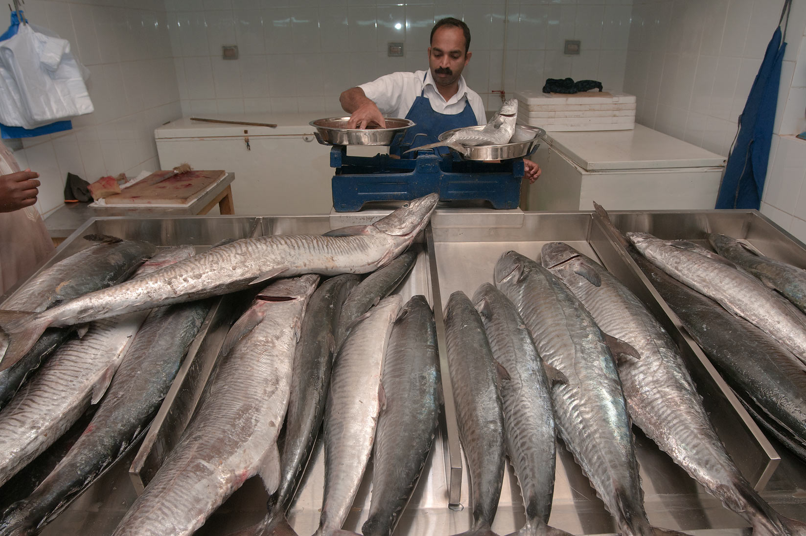 Weighting King Fish (mackerel) in Central Fish Market. Doha, Qatar