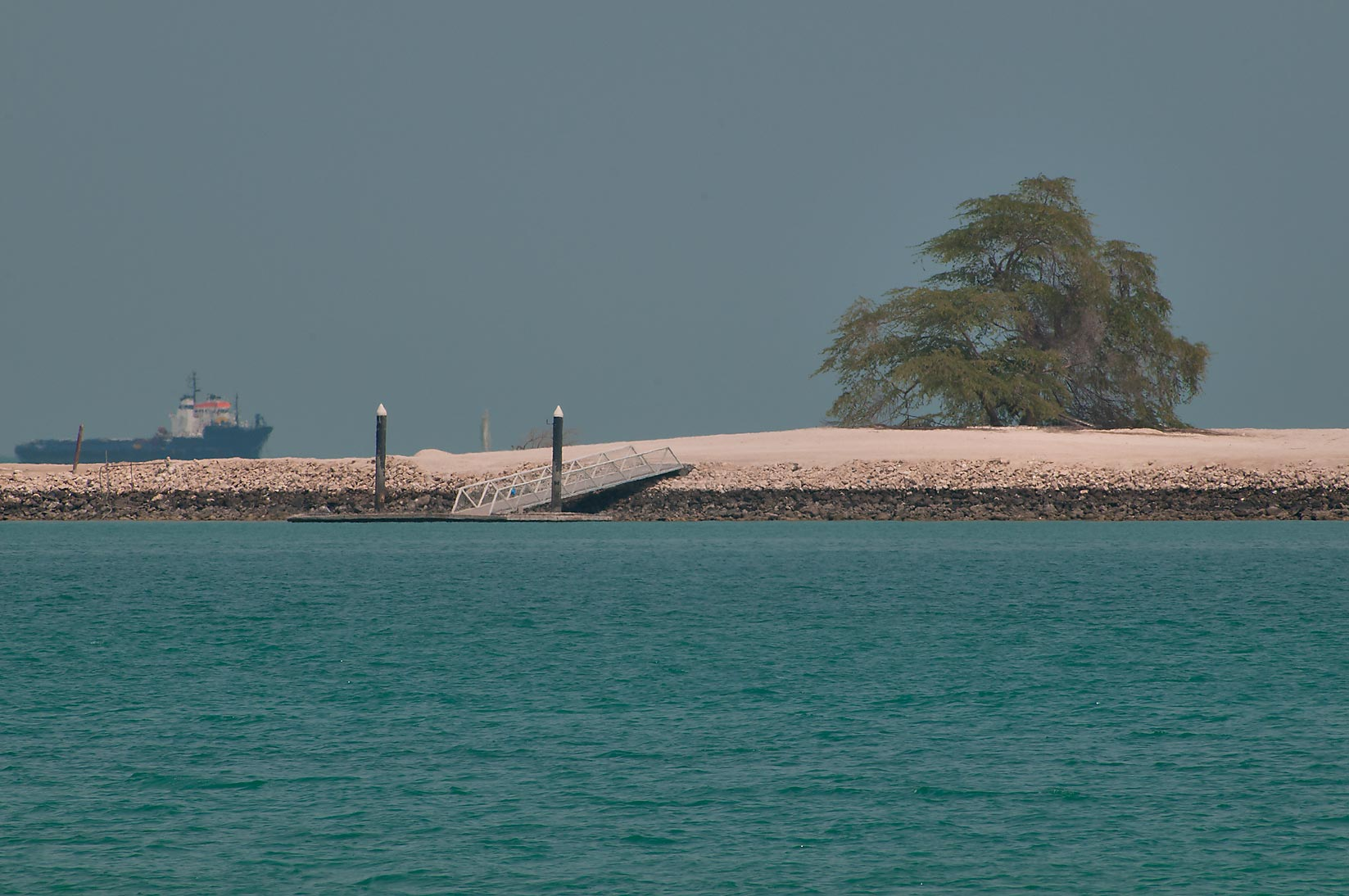 Palm Island with a lone mesquite tree (Prosopis...Games, view from Corniche. Doha, Qatar