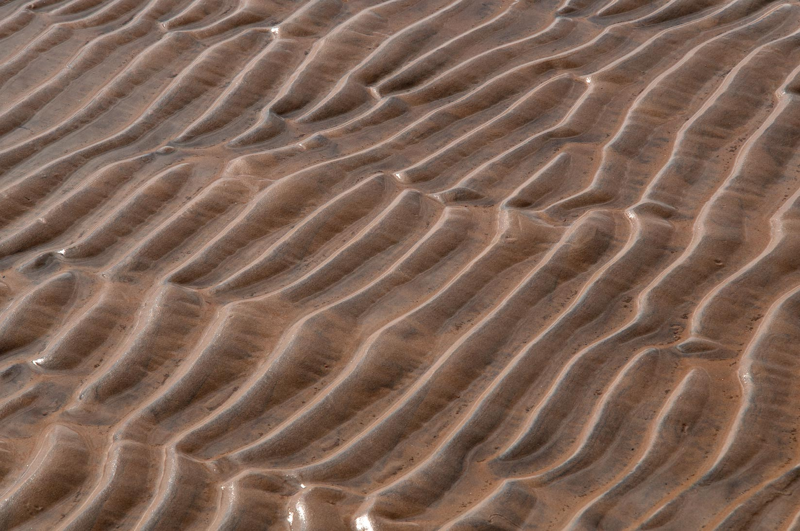 Sand ripples on a beach near Sestroretsk, a suburb of St.Petersburg. Russia