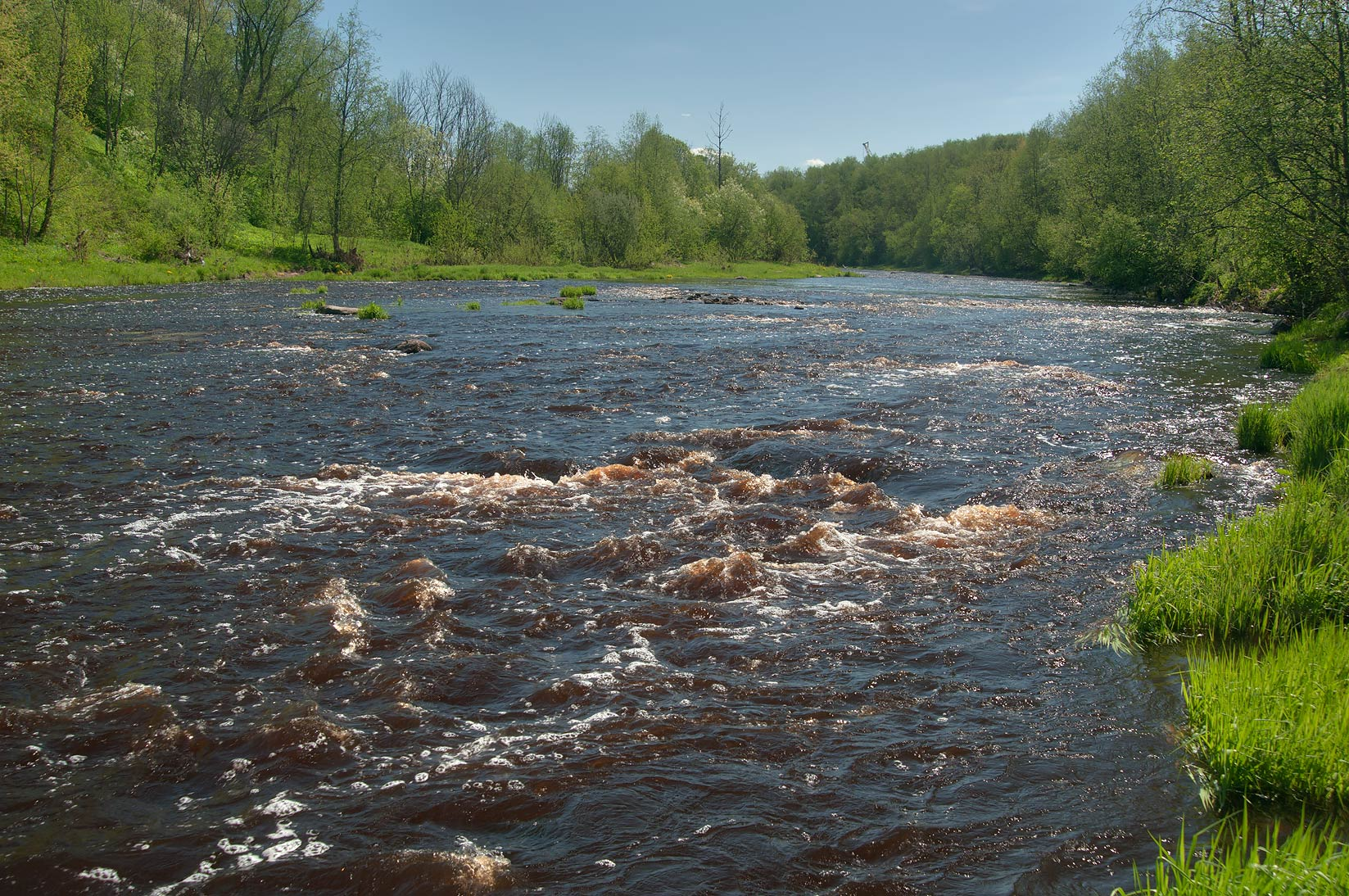 Rapids of Tosna River near Sablino, south from St.Petersburg. Russia