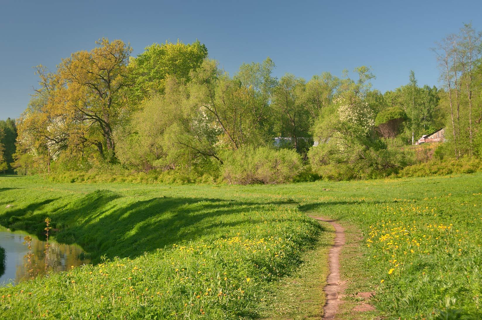 River Meadows