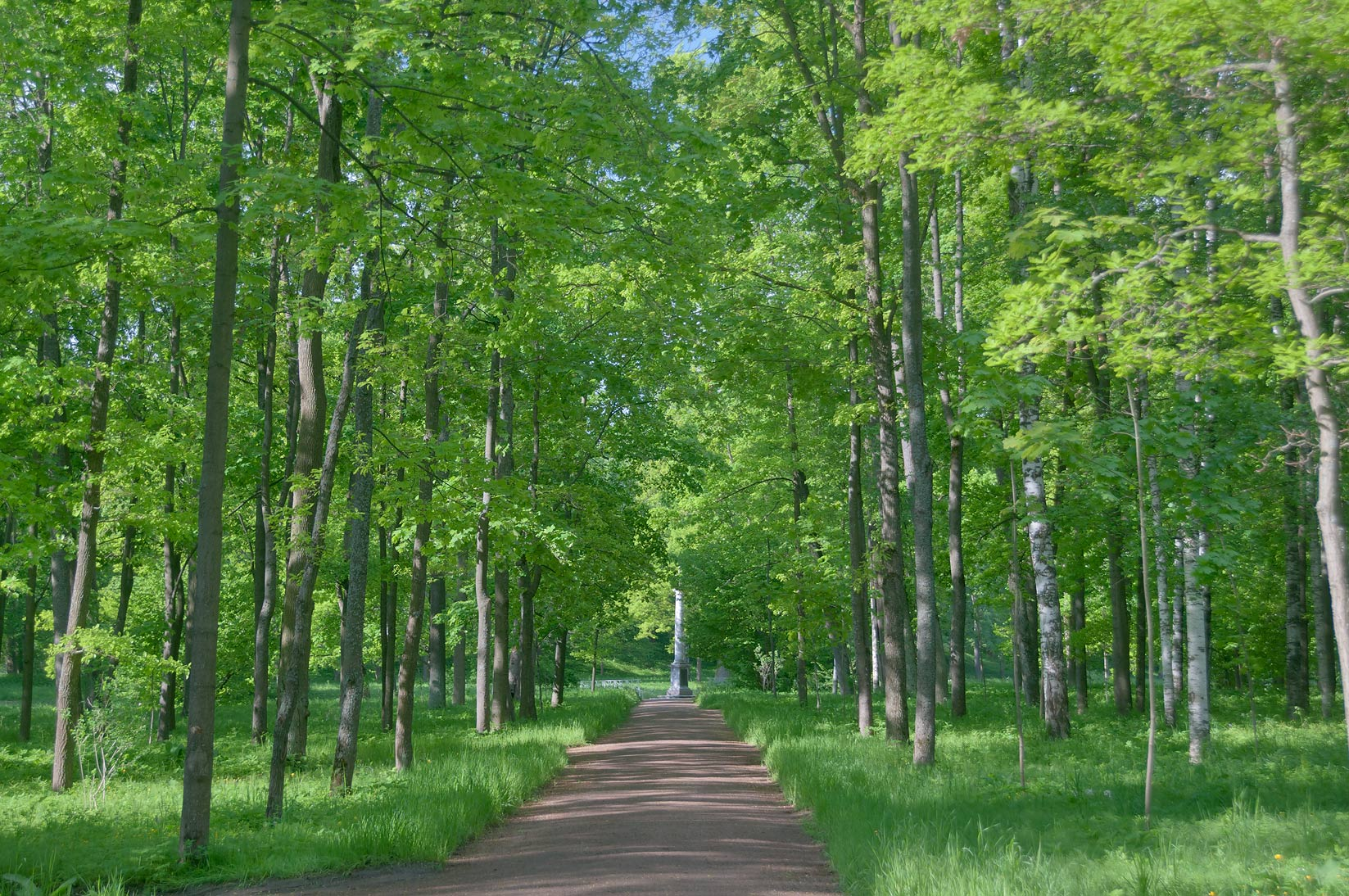 Road in Ekaterininsky Park. Pushkin (former...south from St.Petersburg, Russia