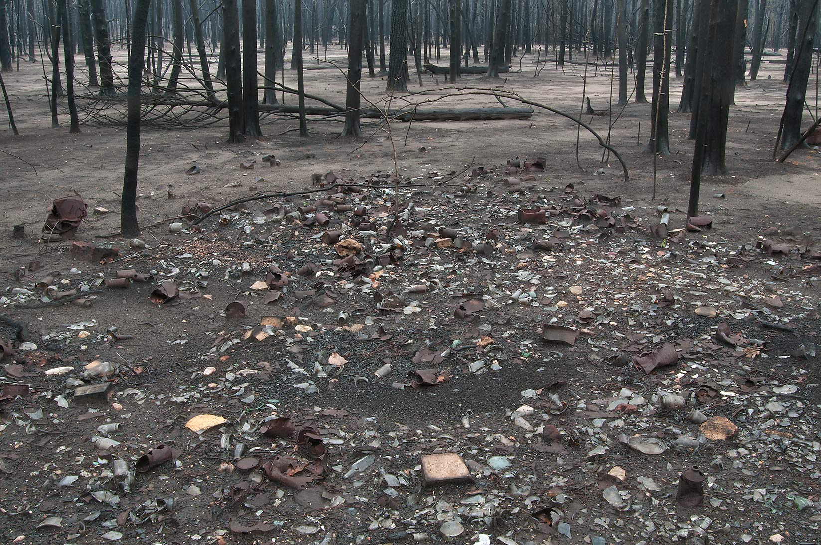 Old camping trash disposal revealed by fire in Bastrop State Park. Bastrop, Texas