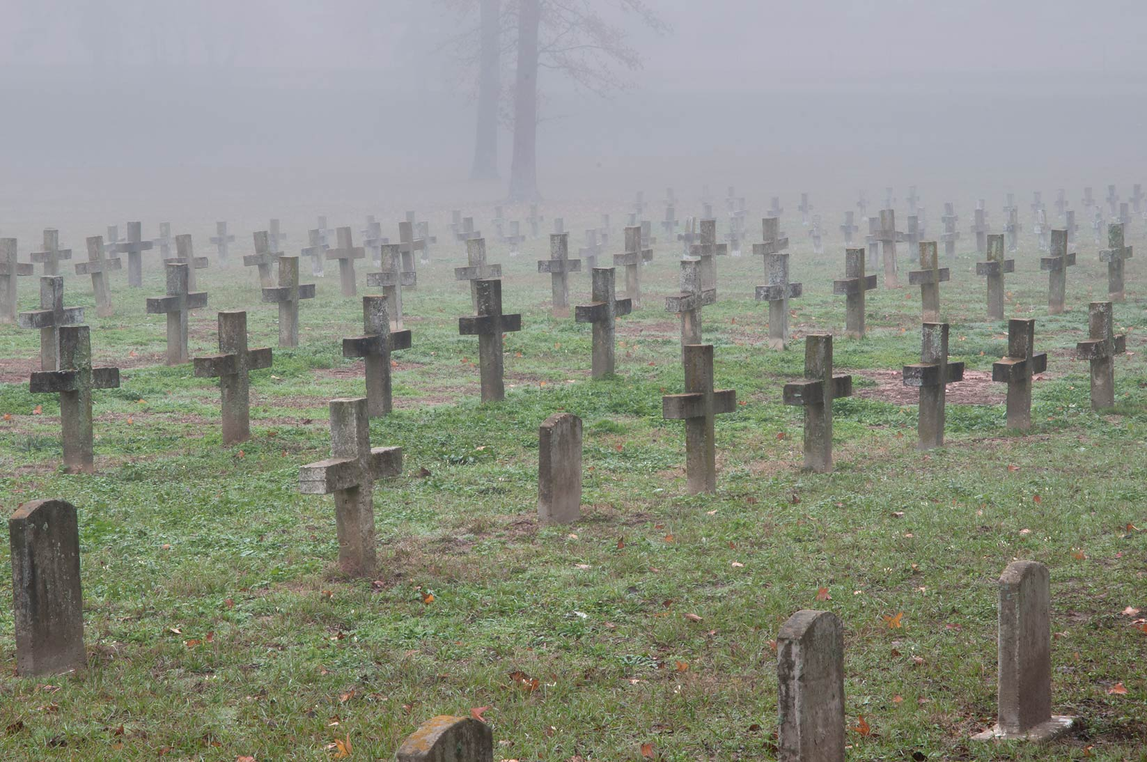 Lines of crosses of TDCJ Captain Joe Byrd...Cemetery in fog. Huntsville, Texas