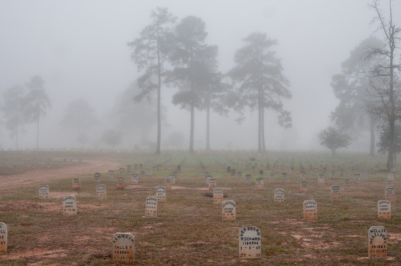 Recent tombs of TDCJ Captain Joe Byrd (Peckerwood Hill) Cemetery in fog. Huntsville, Texas