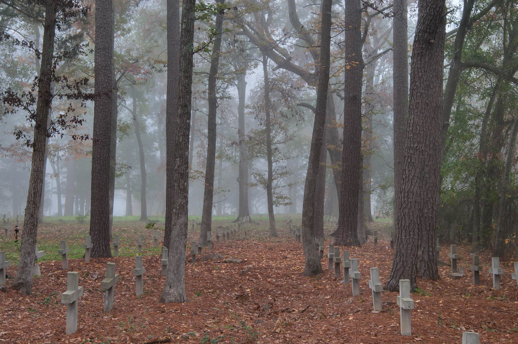 Slave section of Oakwood Cemetery in fog. Huntsville, Texas