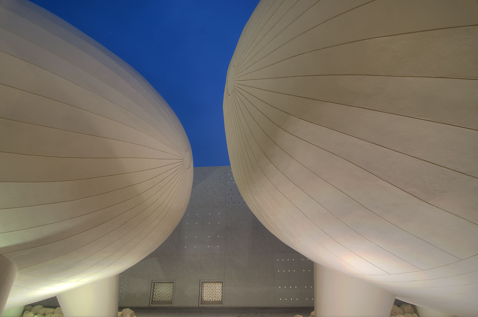 Two ovoid lecture halls of Weill Cornell Medical...in Education City campus. Doha, Qatar