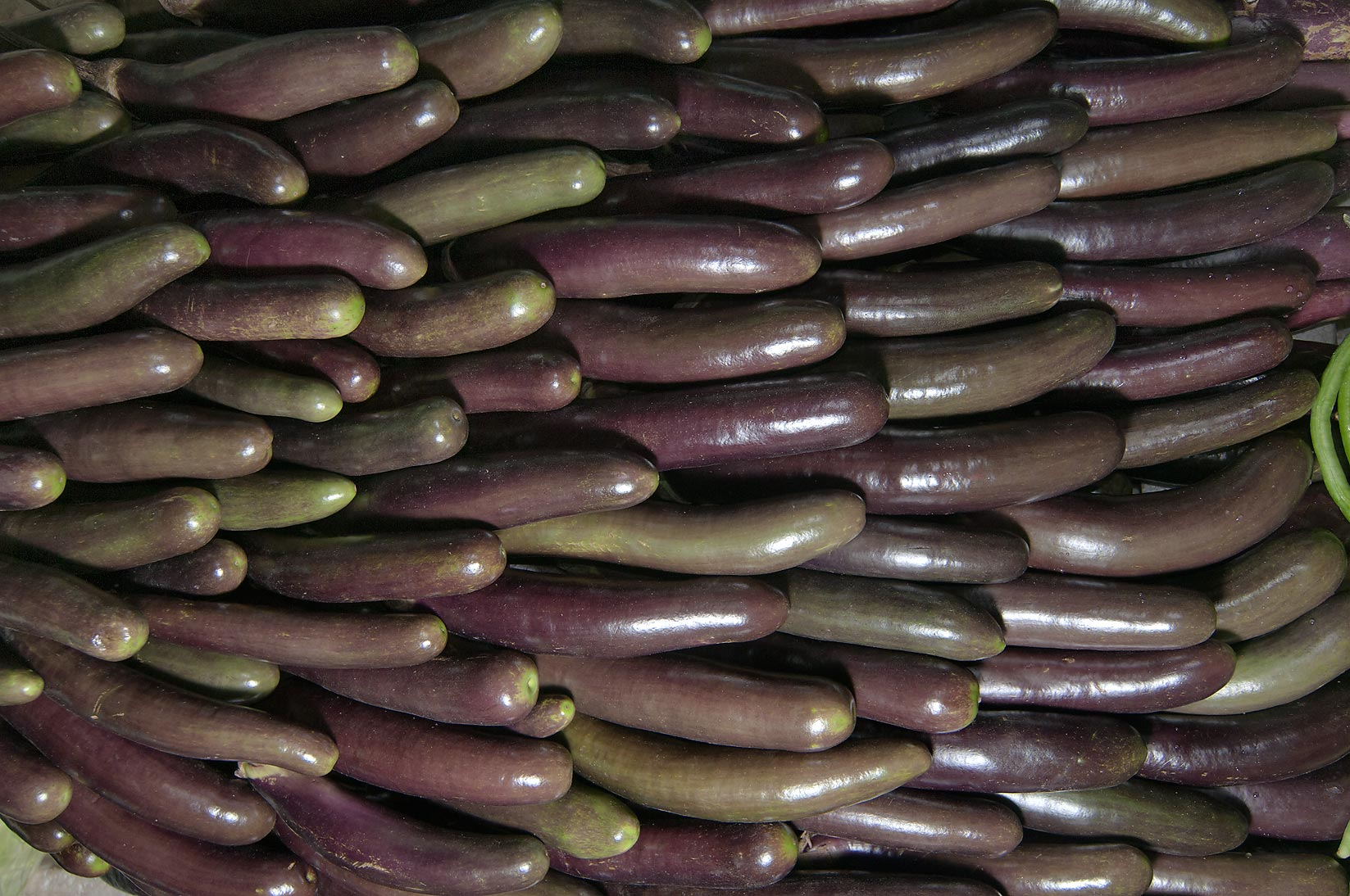 Masses of eggplant in vegetable market. Doha, Qatar