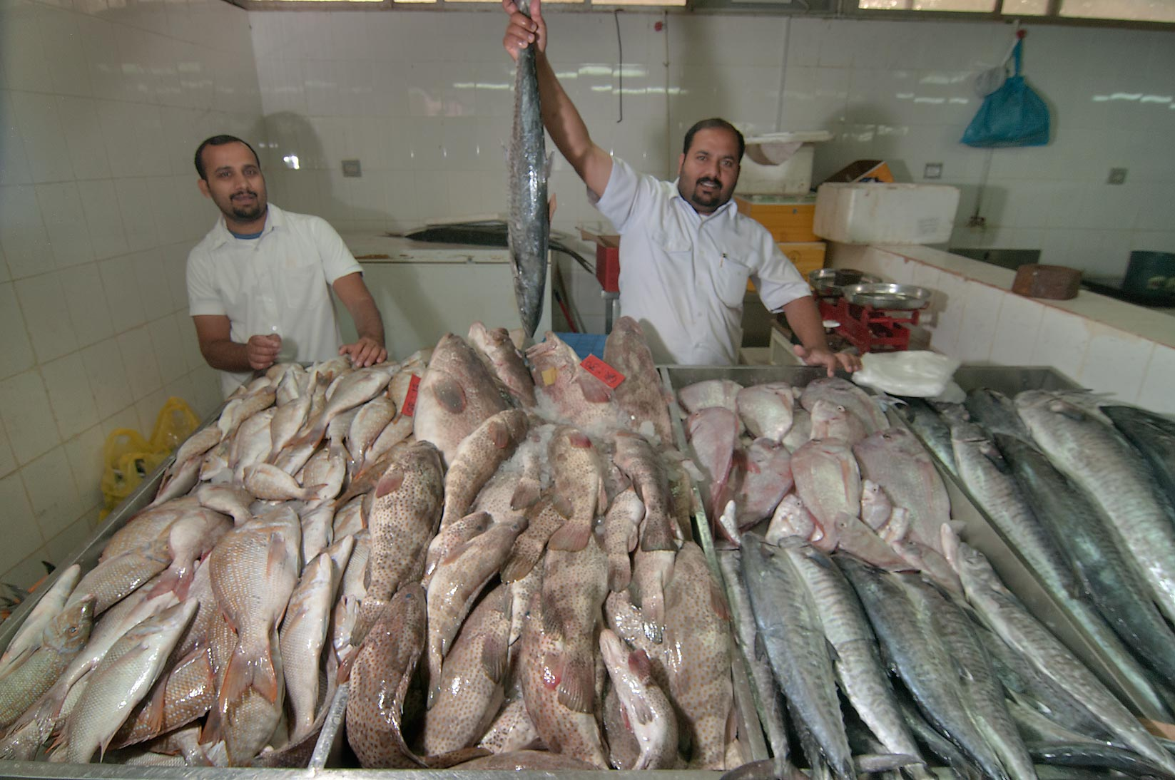 Selling fish in Wholesale Fish Market. Doha, Qatar