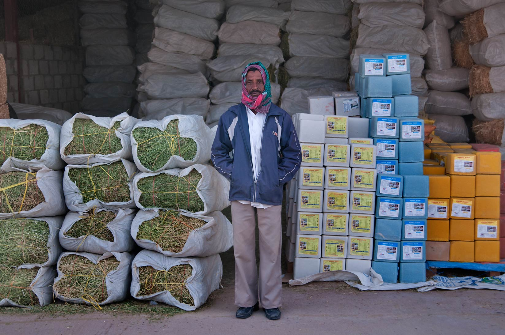Seller with fodder and mineral blocks in Wholesale Animal Market. Doha, Qatar