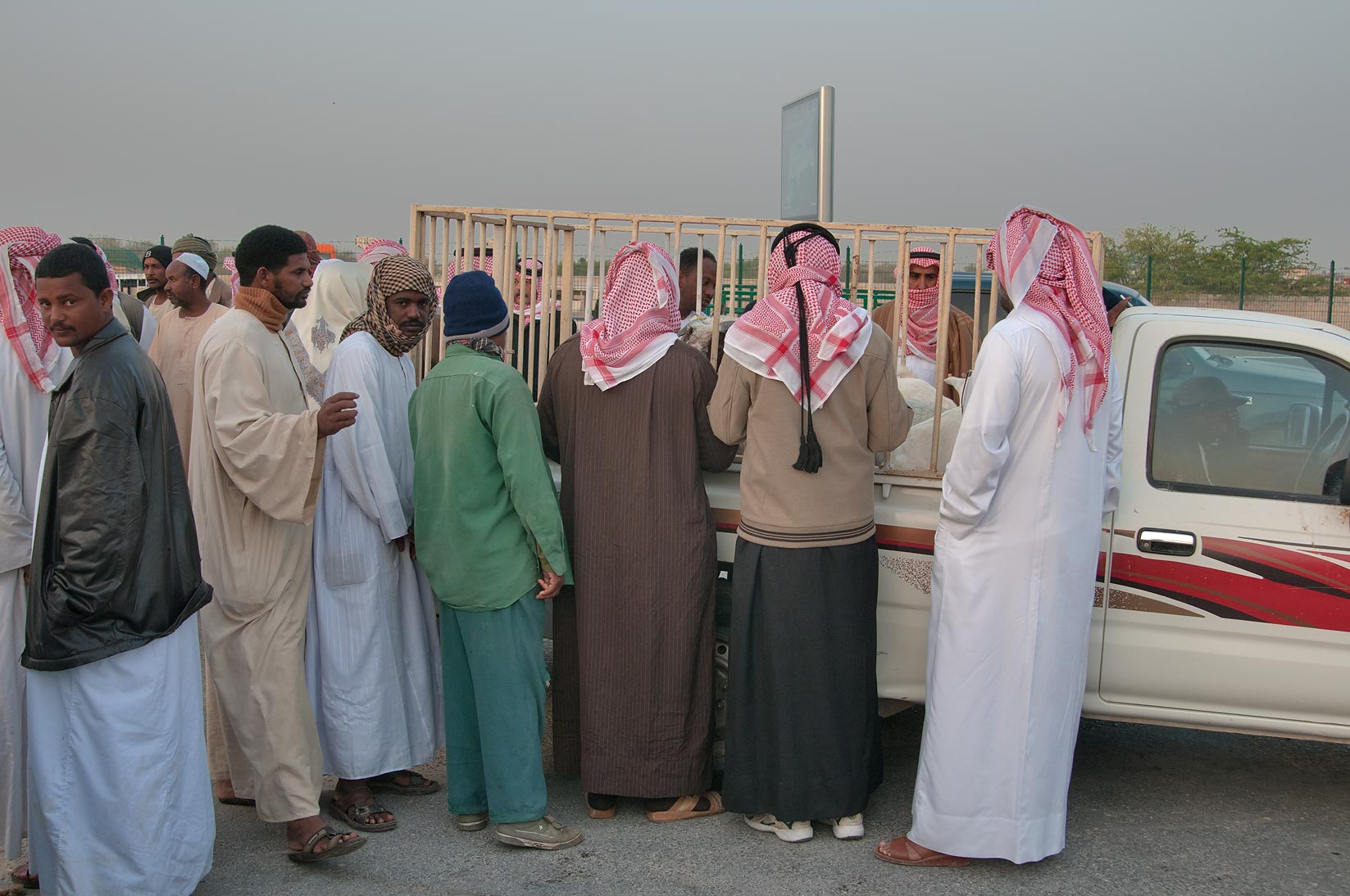 Doha Qatar People Search In Pictures