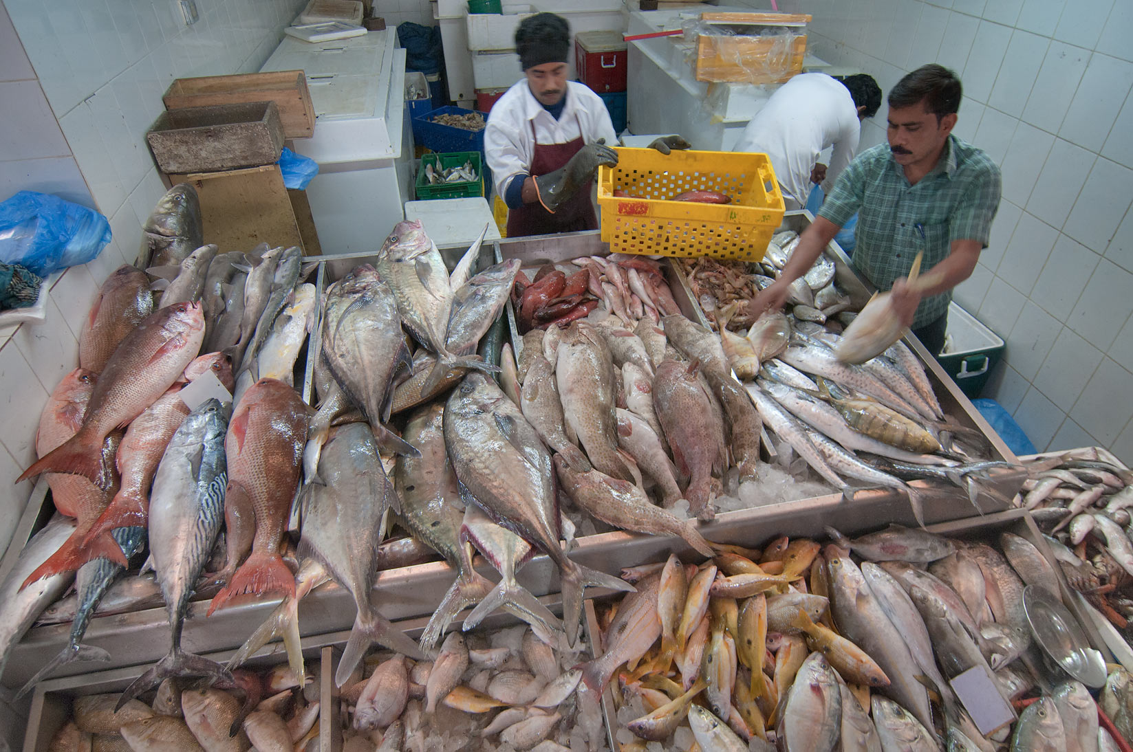 Fish stand in Fish Market, Wholesale Markets area. Doha, Qatar