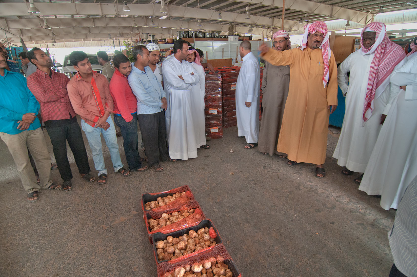 Boxes of desert truffles sold on auction in Omani...Wholesale Markets area. Doha, Qatar