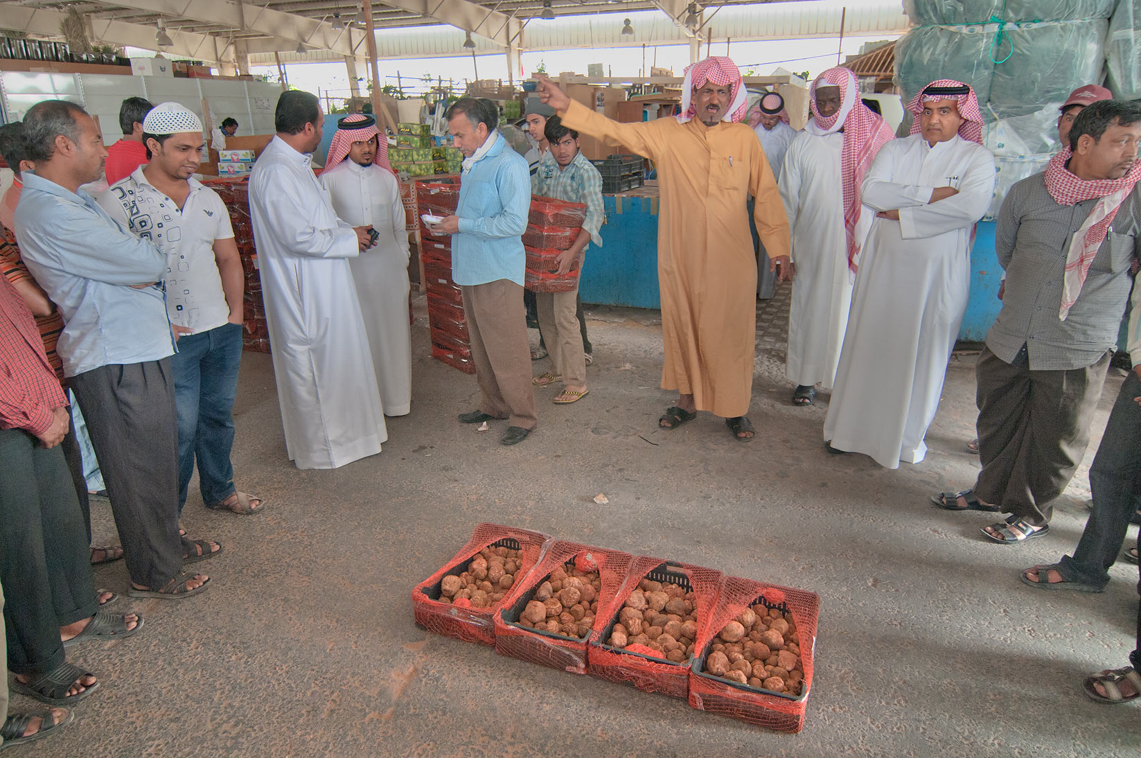 Desert truffles sold on auction in Omani Market, Wholesale Markets area. Doha, Qatar