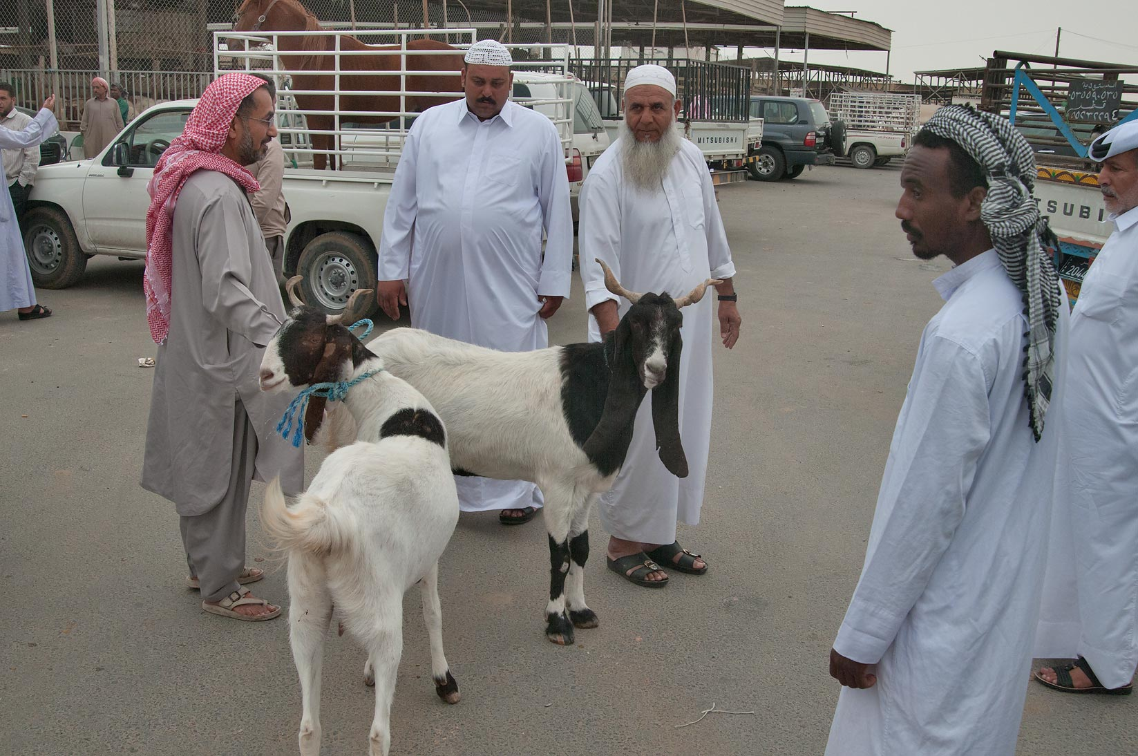 People with goats in Sheep Market, Wholesale Markets area. Doha, Qatar