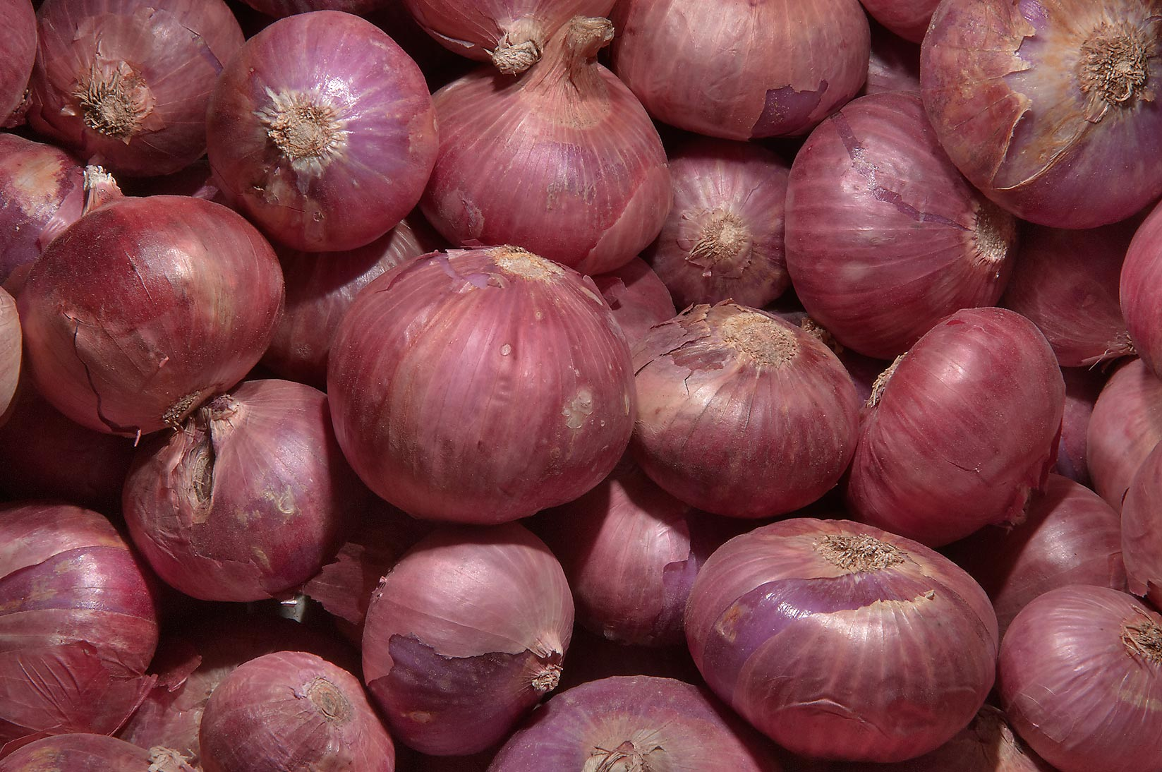 Onions in Vegetable Market, Wholesale Markets area. Doha, Qatar