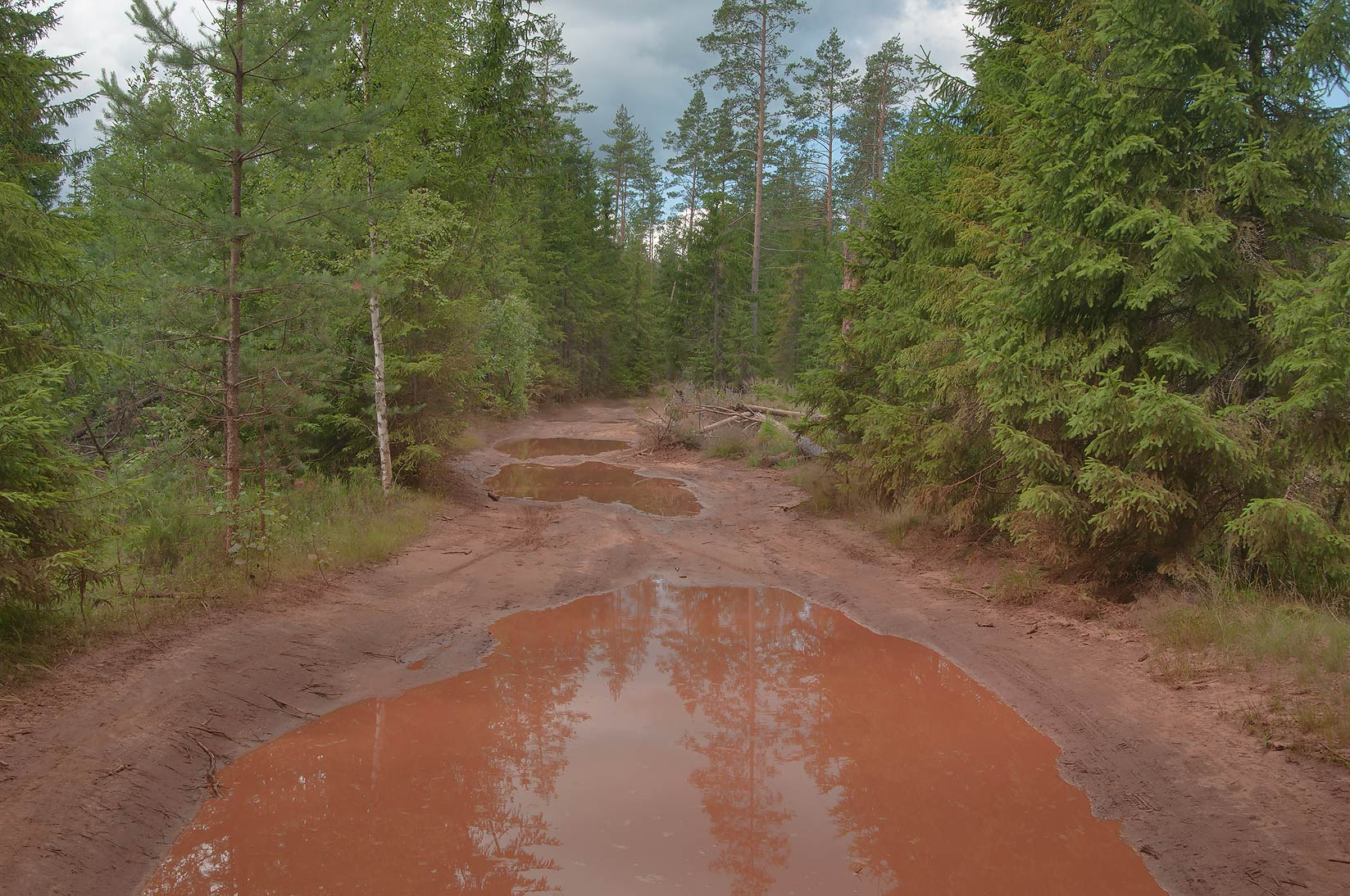 Puddles on a road near Vetrenoe Lake south from...miles north from St.Petersburg. Russia