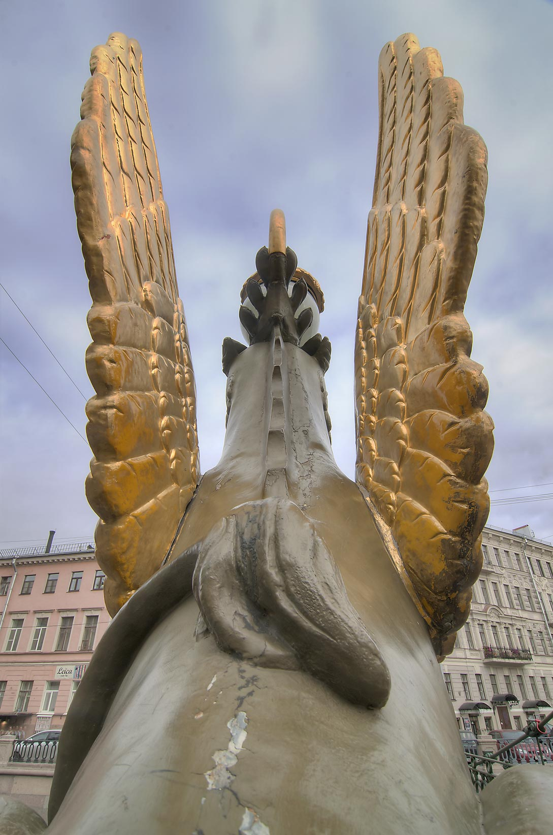 Gryphon's wings on Bankovsky Bridge of Griboedov Canal. St.Petersburg, Russia
