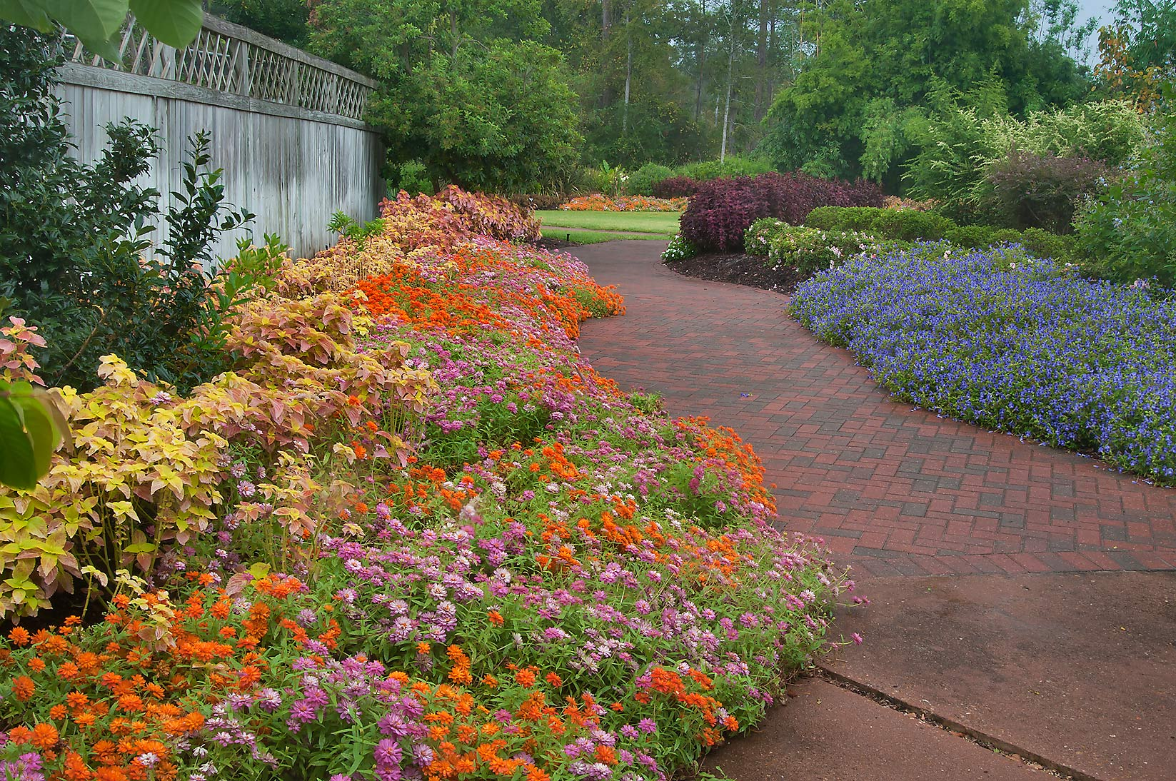 Flower beds in Mercer Arboretum and Botanical Gardens. Humble (Houston area), Texas