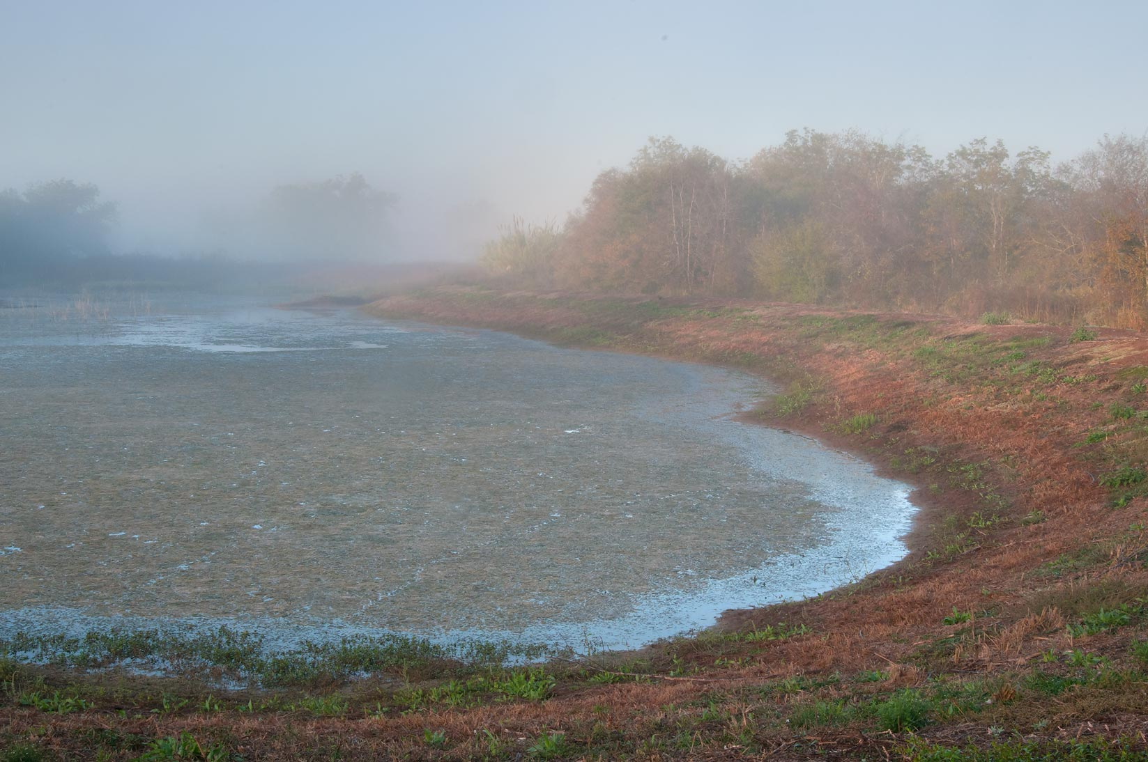Pond with mist in Washington-on-the-Brazos State Historic Site. Washington, Texas