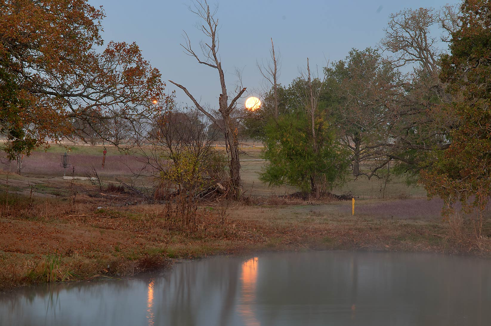 Moonset over a pond of Research Park on campus of...M University. College Station, Texas