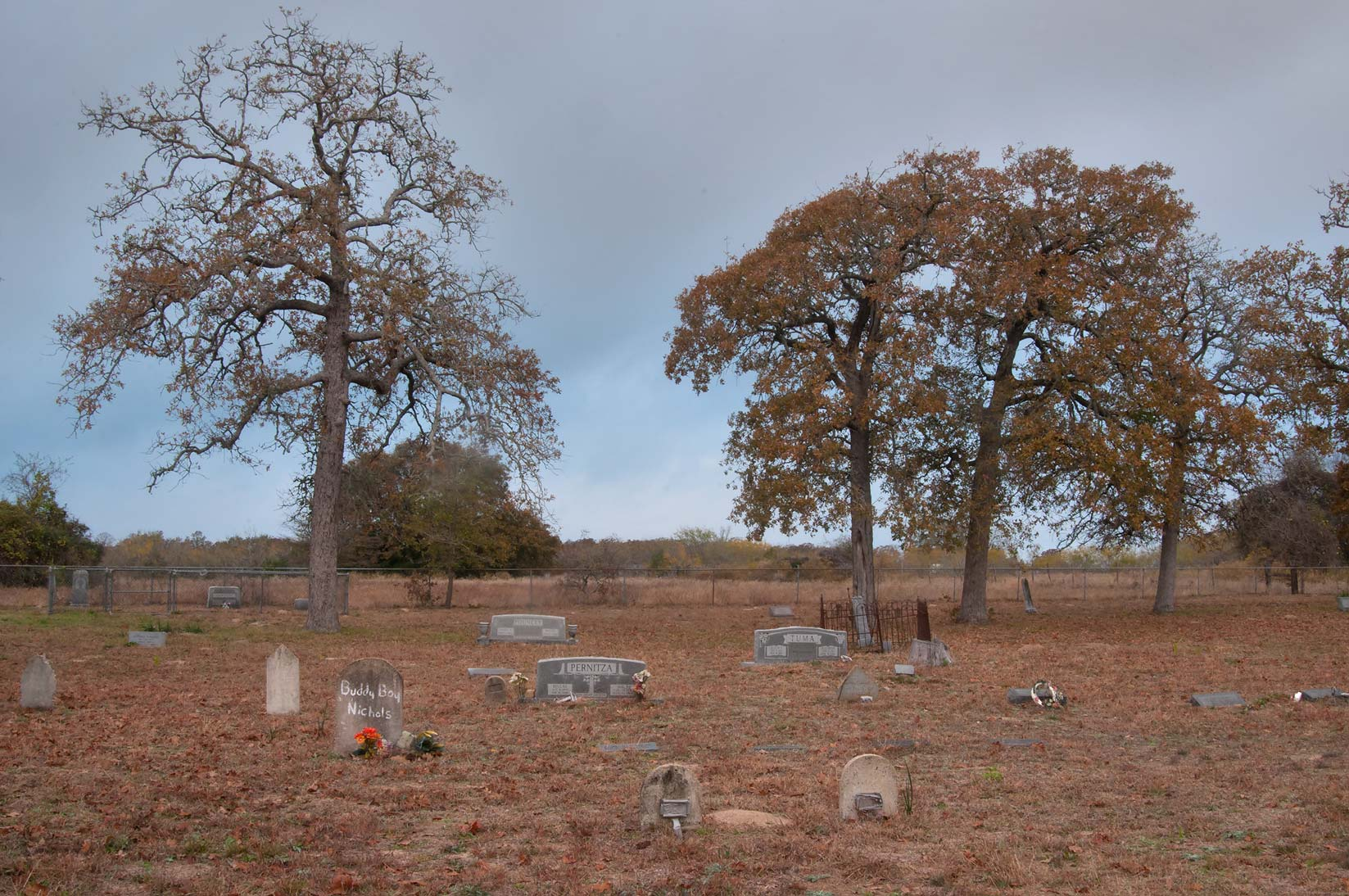 Sand Grove Cemetery south from Milano. Texas