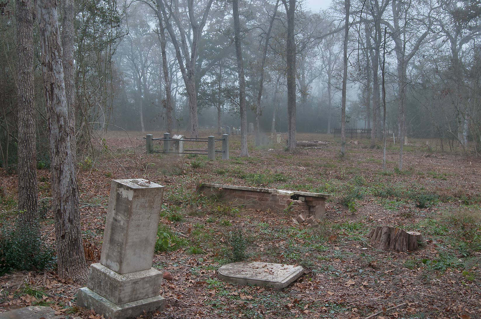Tombs of Washington Cemetery in fog. Washington, Texas
