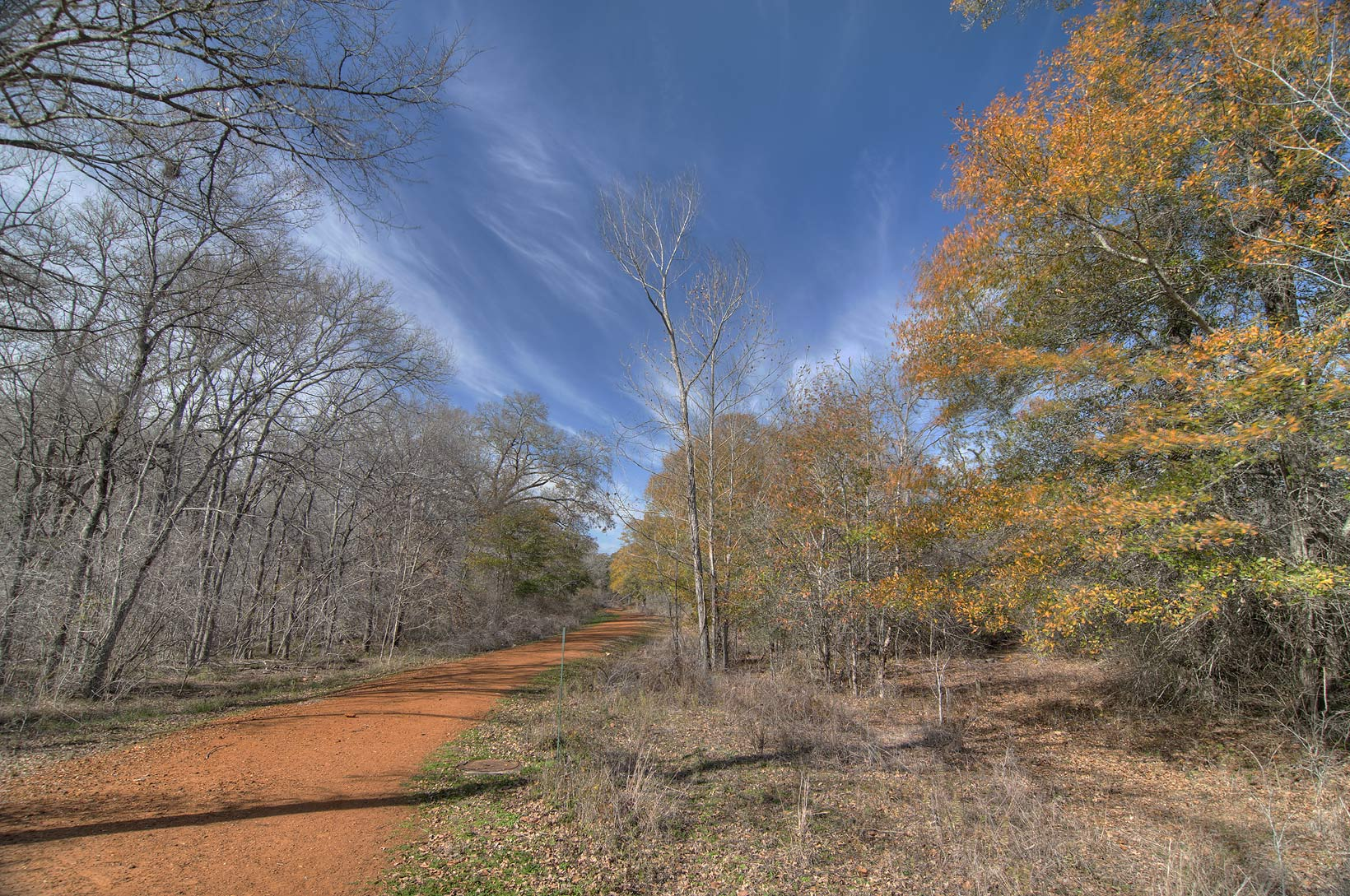 Road in Lick Creek Park. College Station, Texas