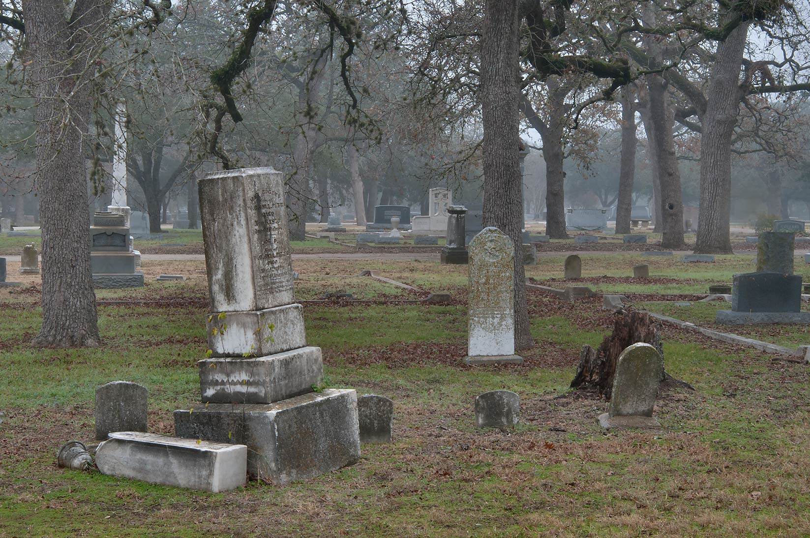 Tombs and oaks of City Cemetery in mist. Bryan, Texas