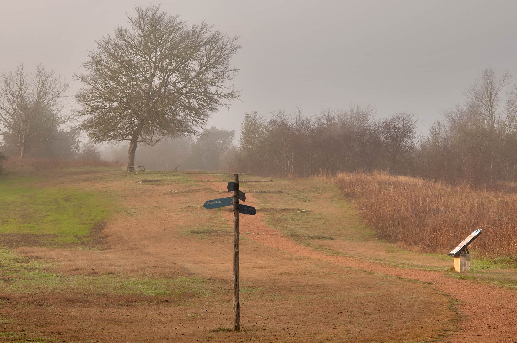 Slope of Ferry Rd. in fog in Washington-on-the...State Historic Site. Washington, Texas