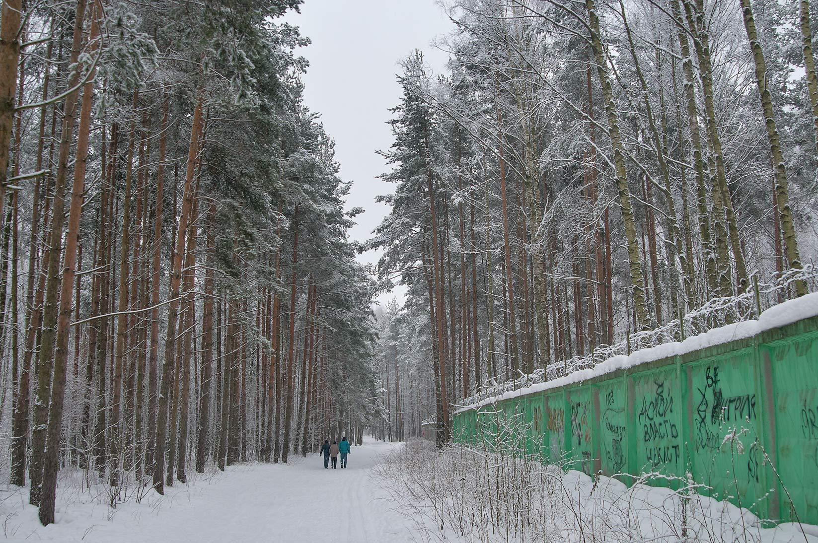 Photo 1148 04 Fence Of Shooting Range In Sosnovka Park