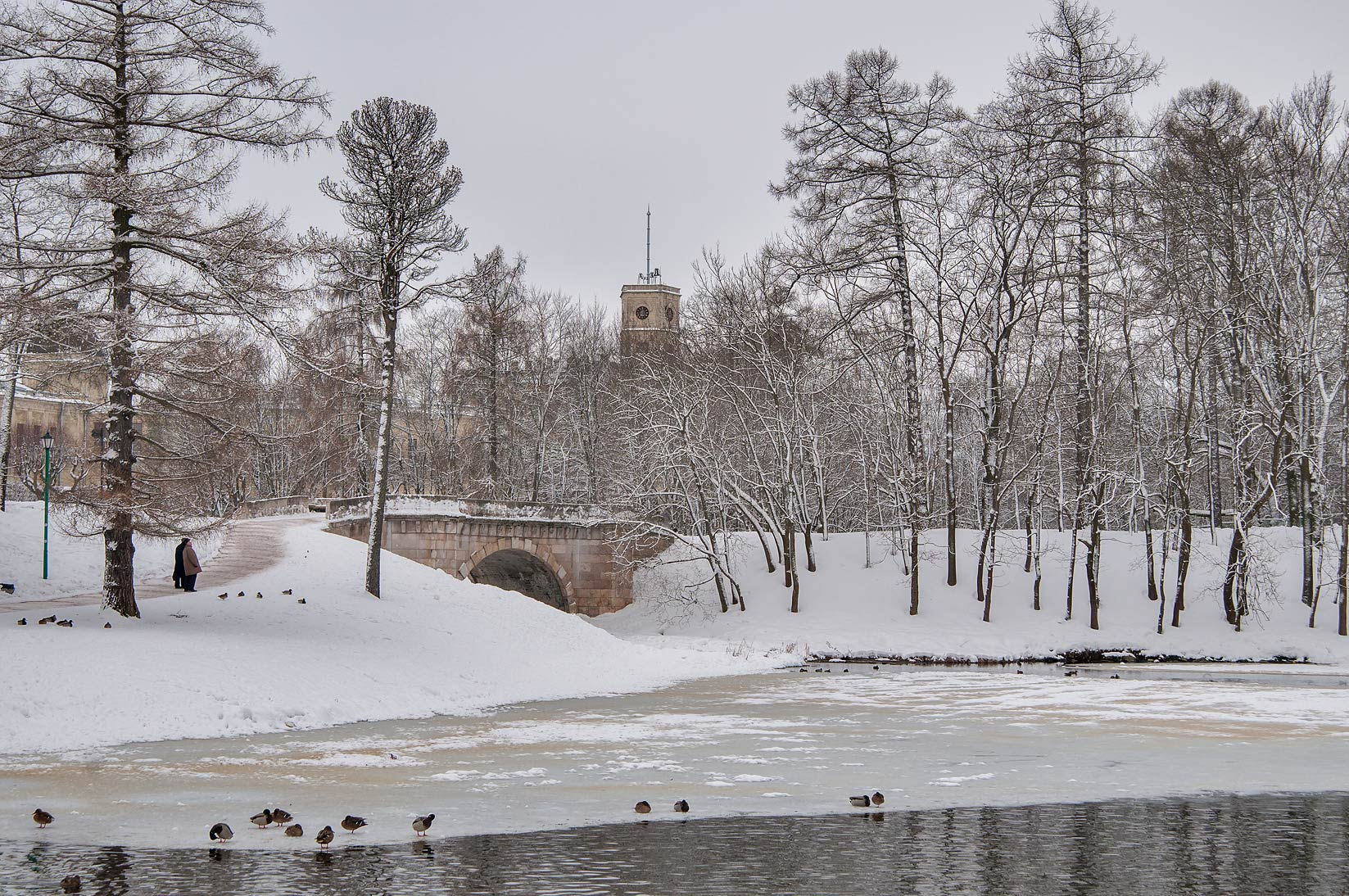 Beloe Lake ner Karpin Pond in the park of Gatchina, suburb of St.Petersburg, Russia