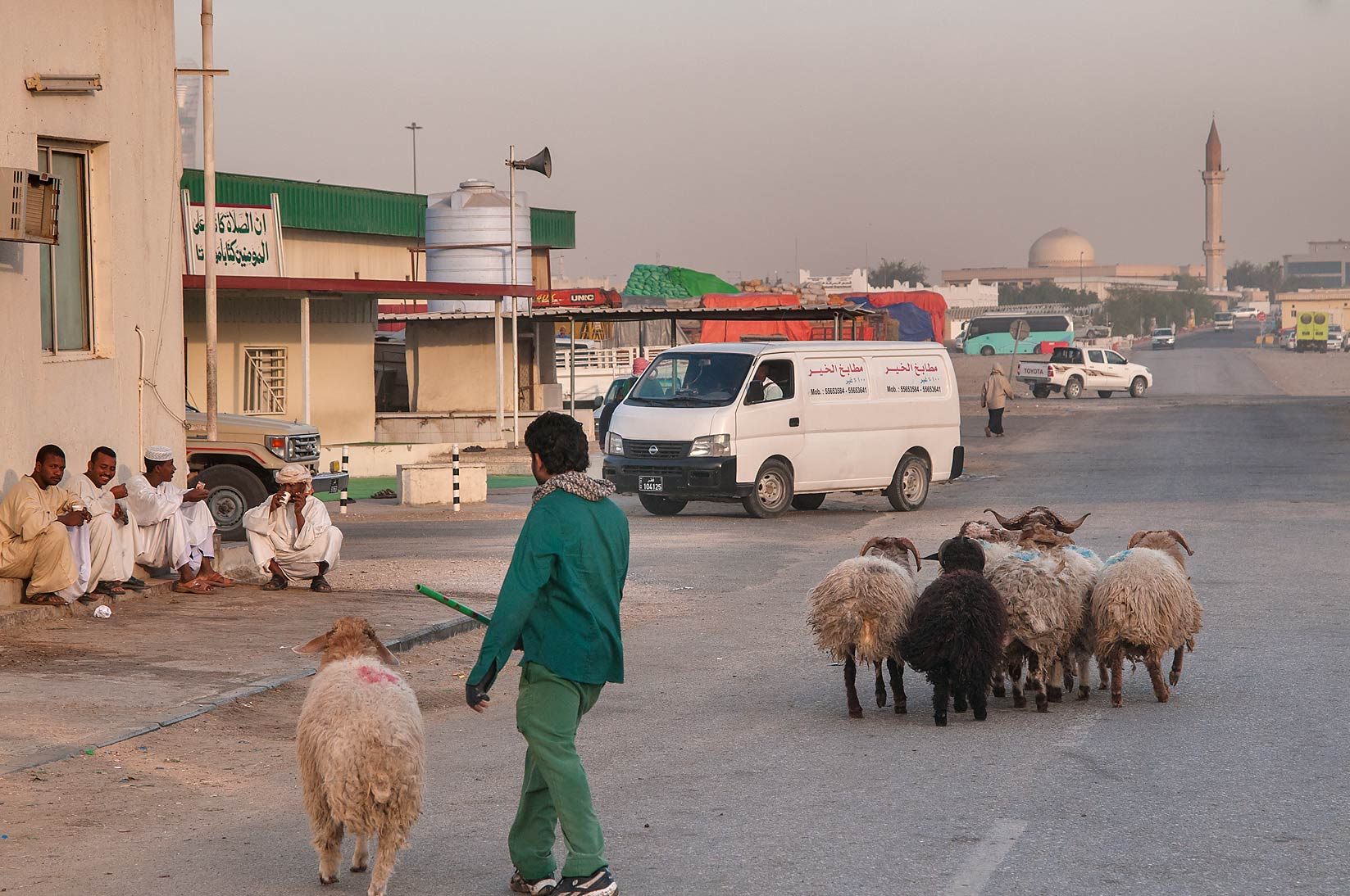Herding sheep in Livestock Market, Wholesale Markets area. Doha, Qatar