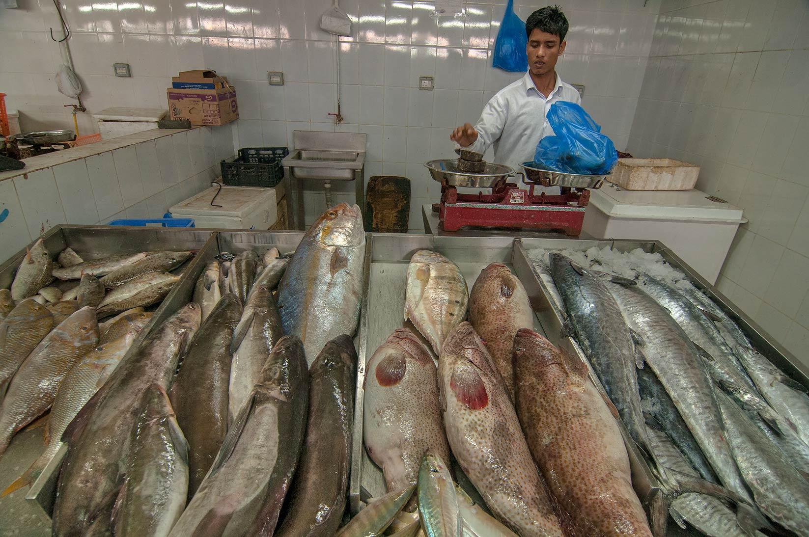 Photo 1166 26 weighting fish in wholesale fish market for Wholesale fish market