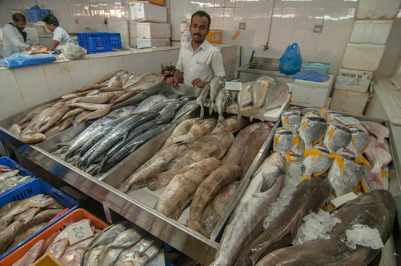 Various fish in Wholesale Fish Market. Doha, Qatar
