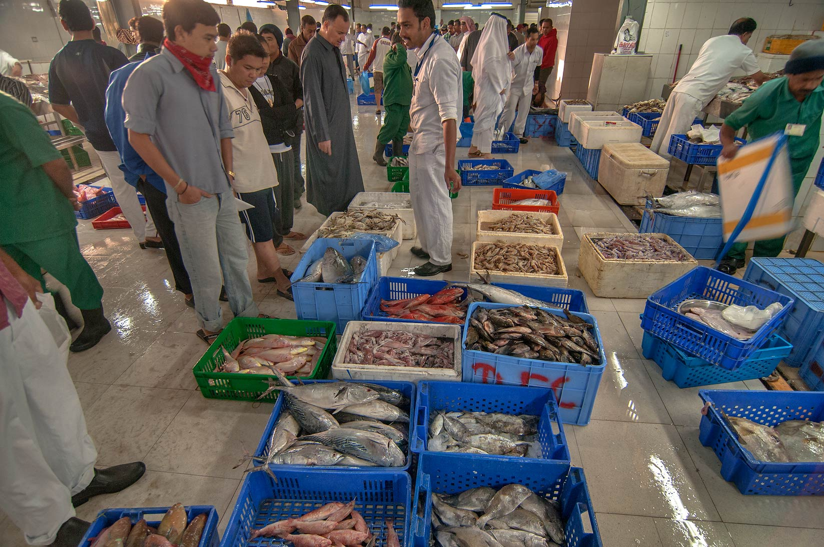 Shopping in Wholesale Fish Market, Abu Hamour area. Doha, Qatar