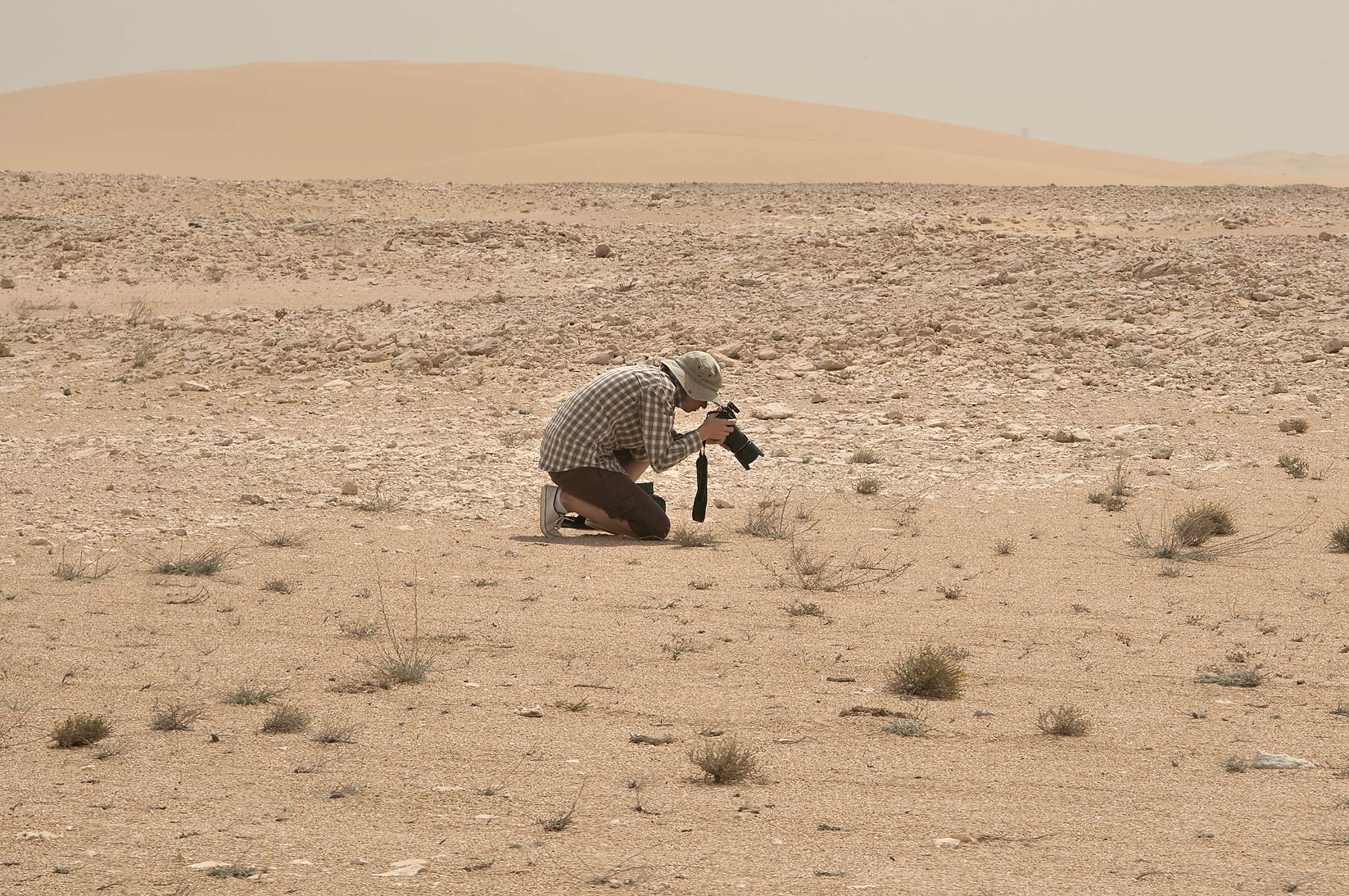 Taking nature picture of a desert plant in area...Mesayeed, south-west from Doha. Qatar