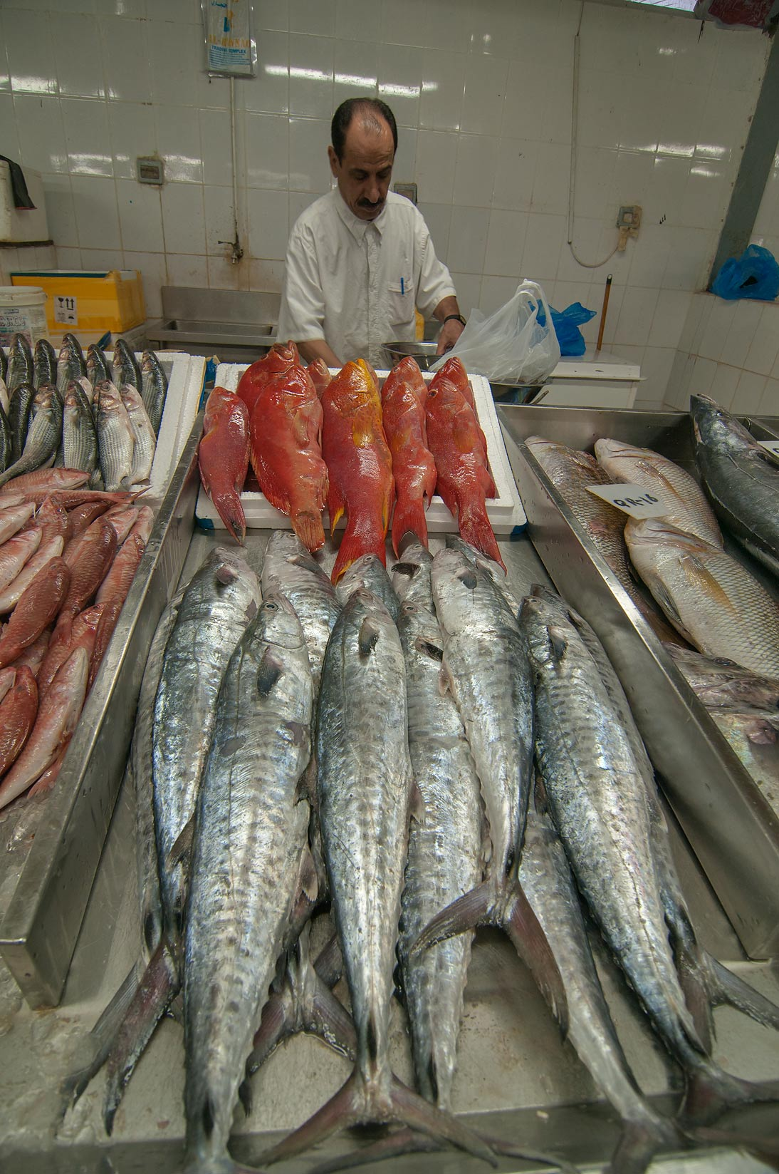 Selling tuna and Malabar blood snapper (Hamra) in...area in Abu Hamour. Doha, Qatar