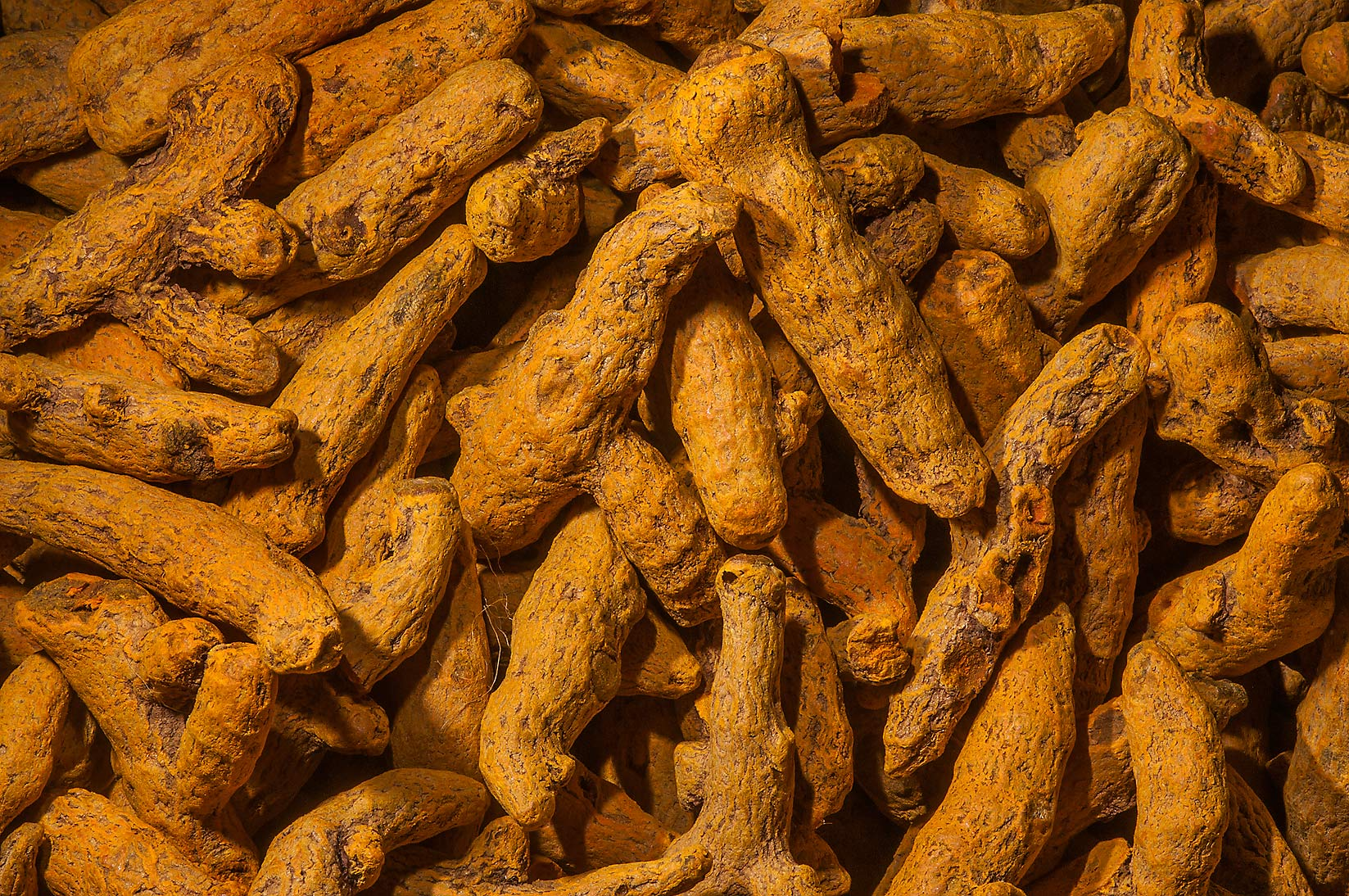 photo 1190 07 dried of snakes for sale in spice section of