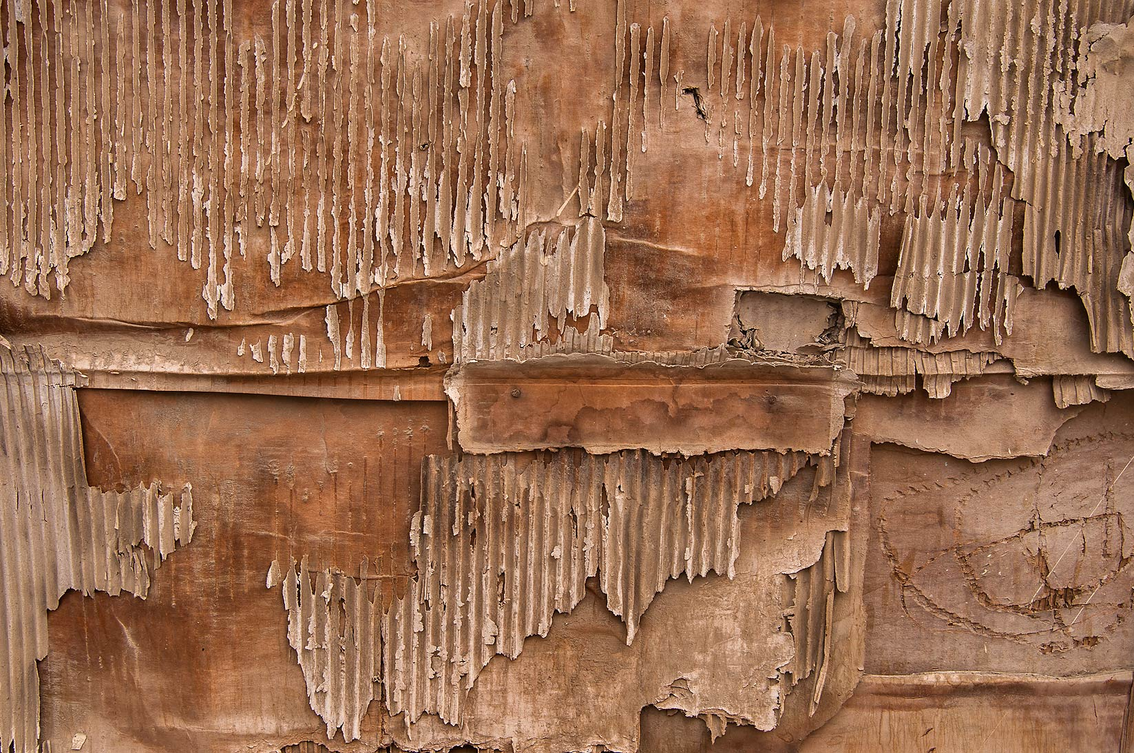 Weathered cardboard at Ibn Abdul Muttalib St. in Old Al Ghanim area. Doha, Qatar
