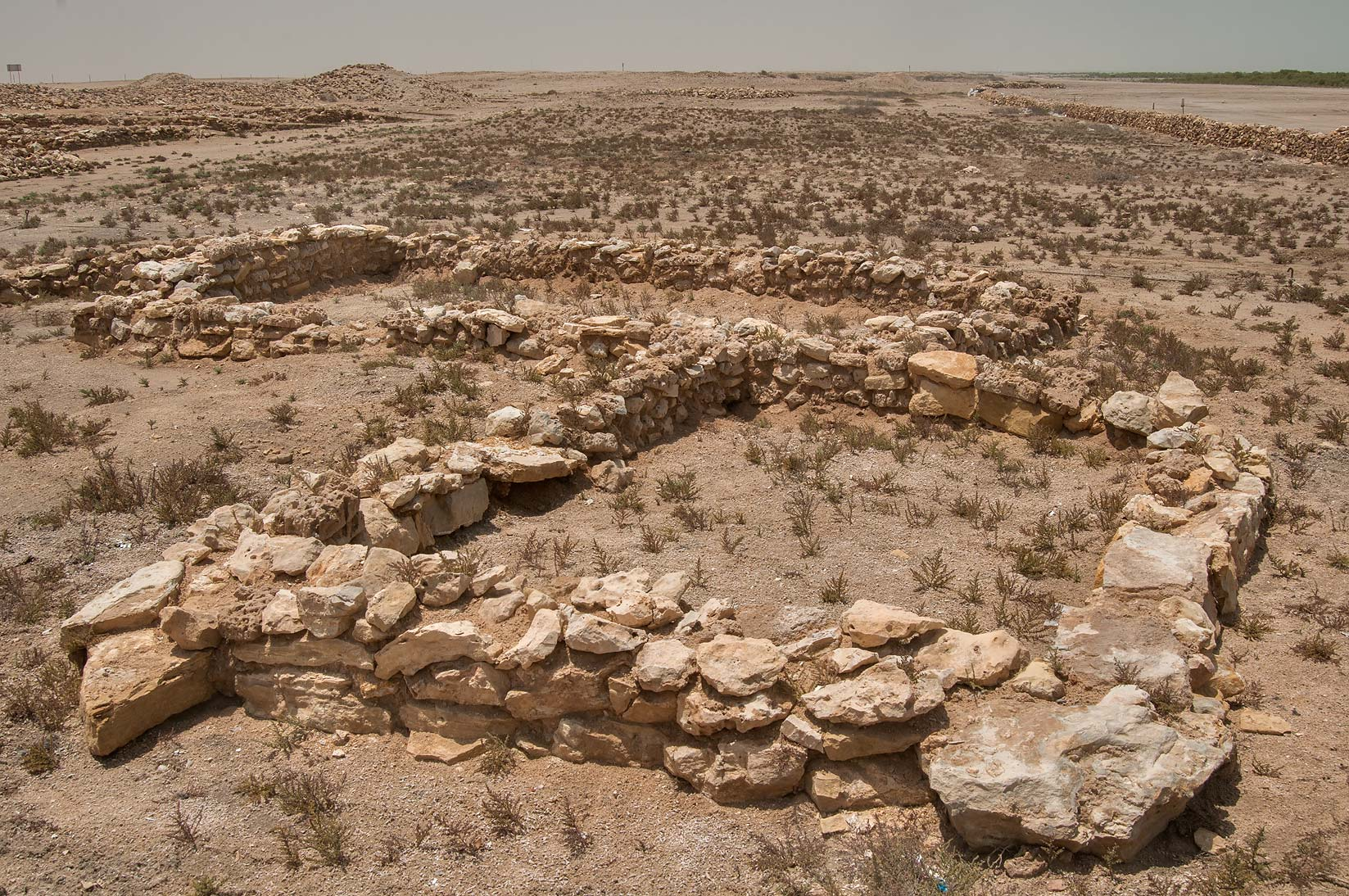 Excavations at al-Ruwaydah, a late Islamic site near Ruwais in northern Qatar