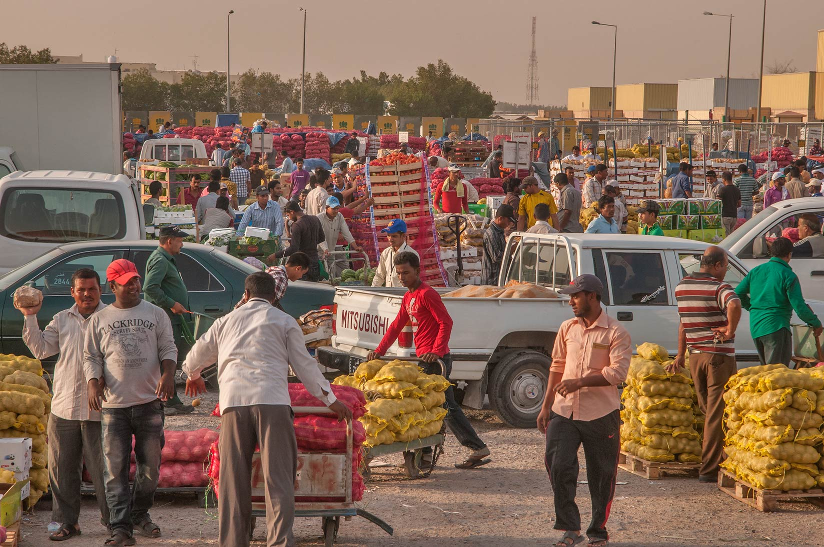 Busy morning hour in Wholesale Vegetable Market, Abu Hamour area. Doha, Qatar
