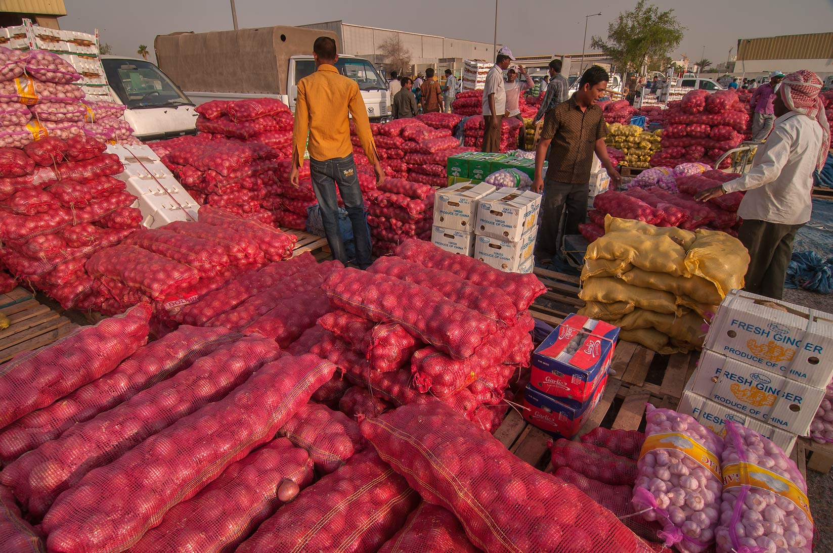 Storage area of Wholesale Vegetable Market in Abu Hamour. Doha, Qatar