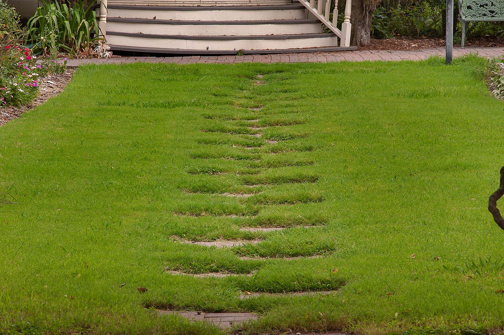 Grassy path in Antique Rose Emporium. Independence, Texas