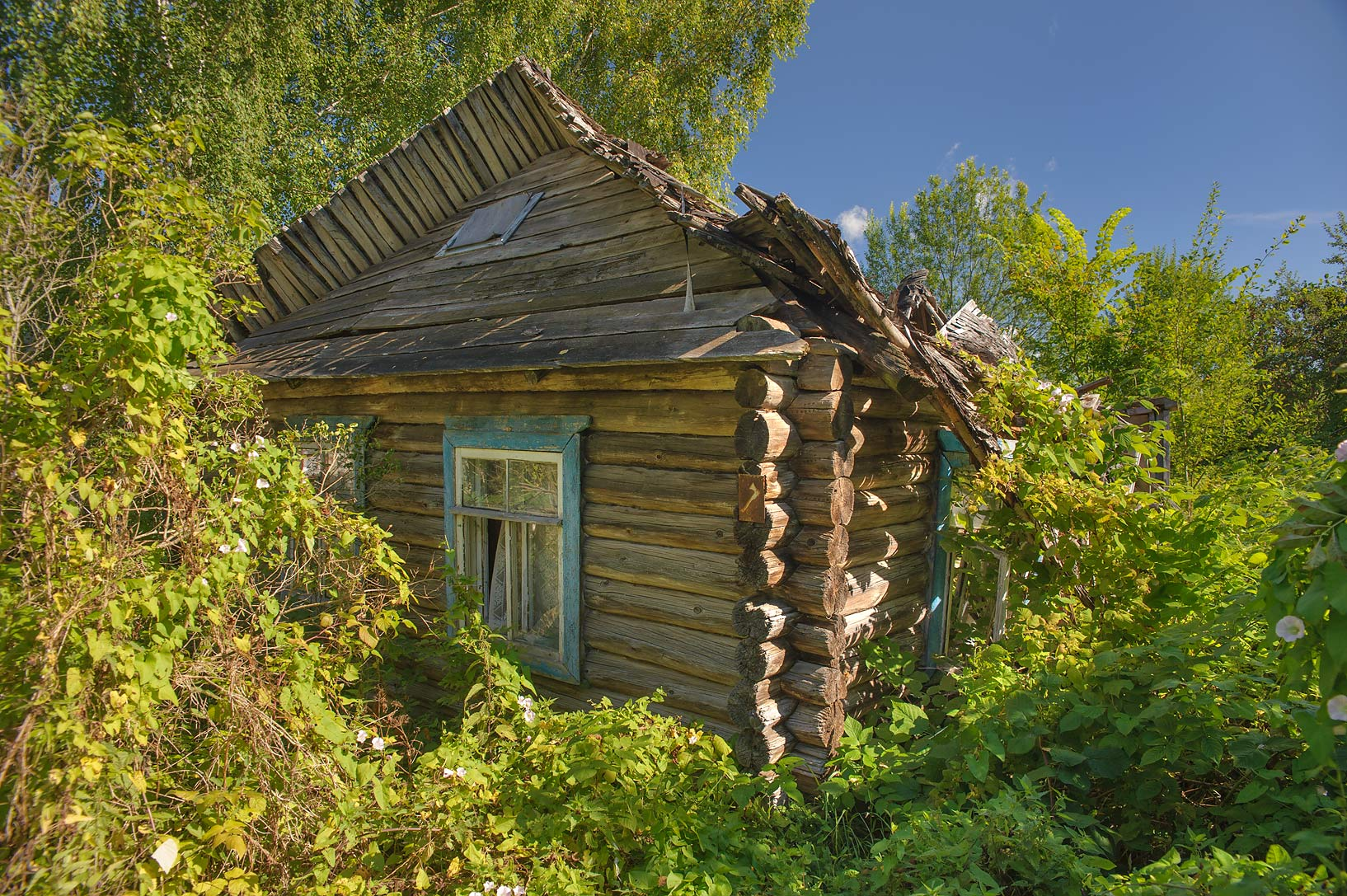 Old log house in Navolok Village west from...from Luga. Leningrad Region, Russia