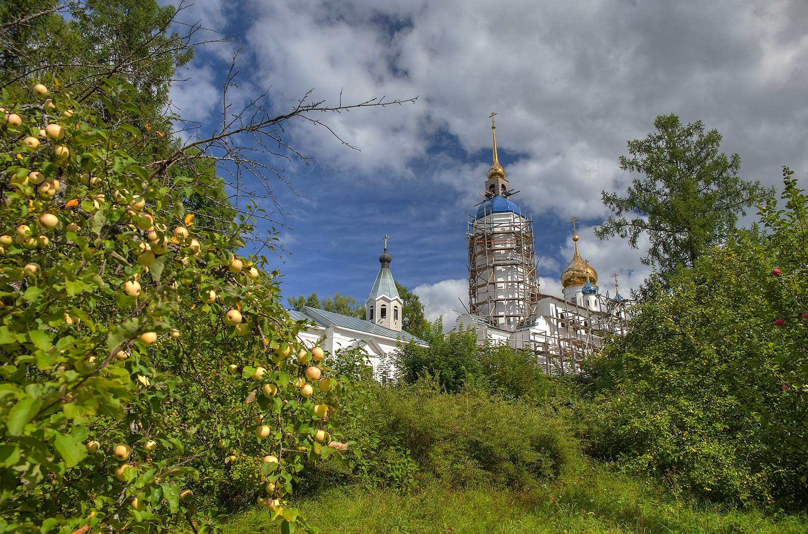 Apple garden and a John Bogoslov Cathedral in...from Luga. Leningrad Region, Russia