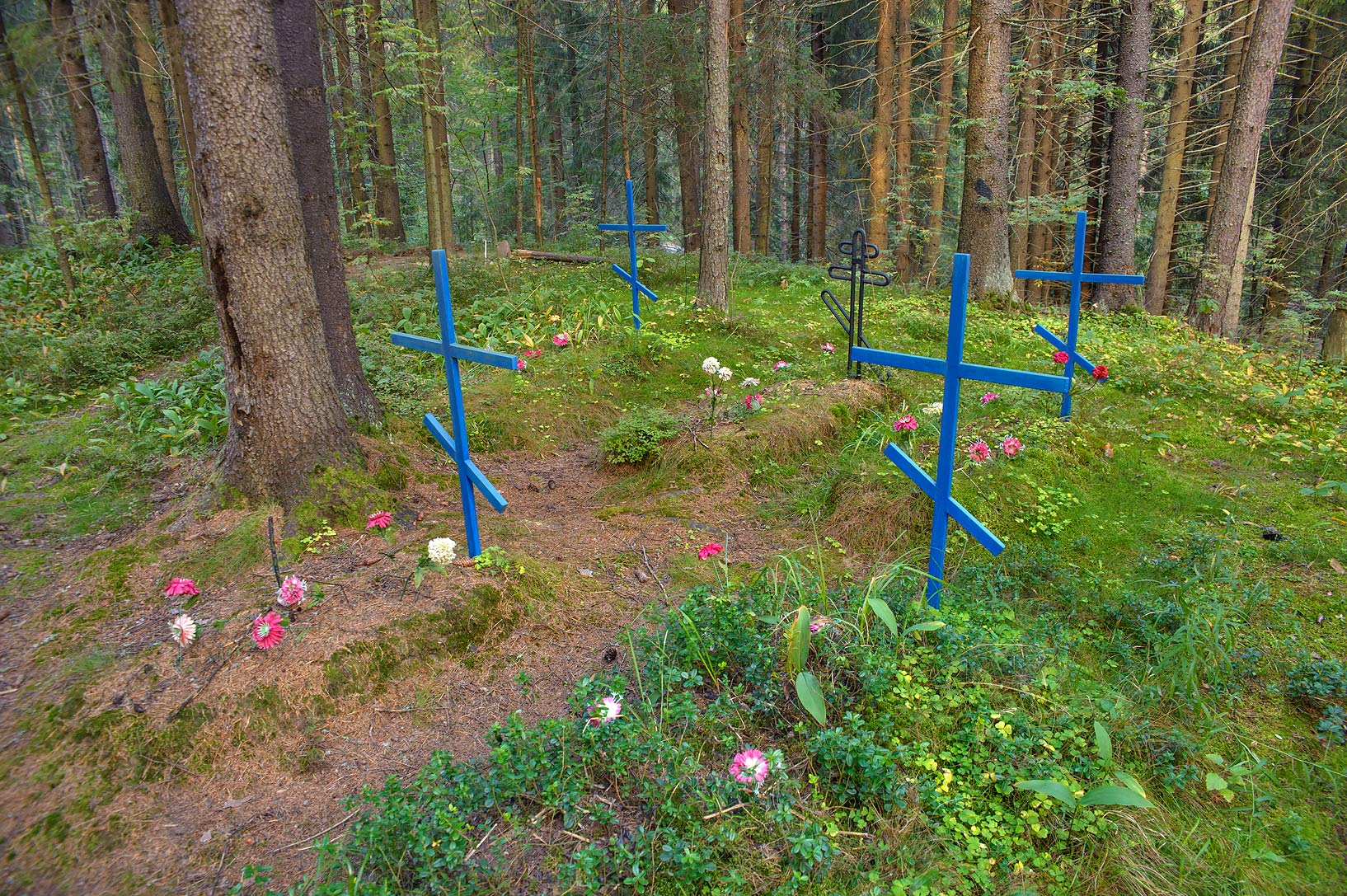 Military cemetery in a forest in Syarpi near Toksovo, suburb of St.Petersburg. Russia