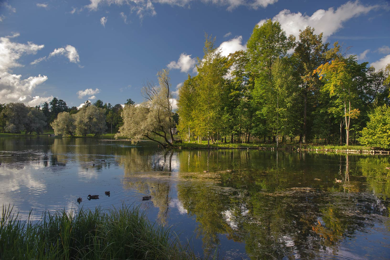 Crow Island in Beloe Lake in Gatchina Park. Gatchina, a suburb of St.Petersburg, Russia