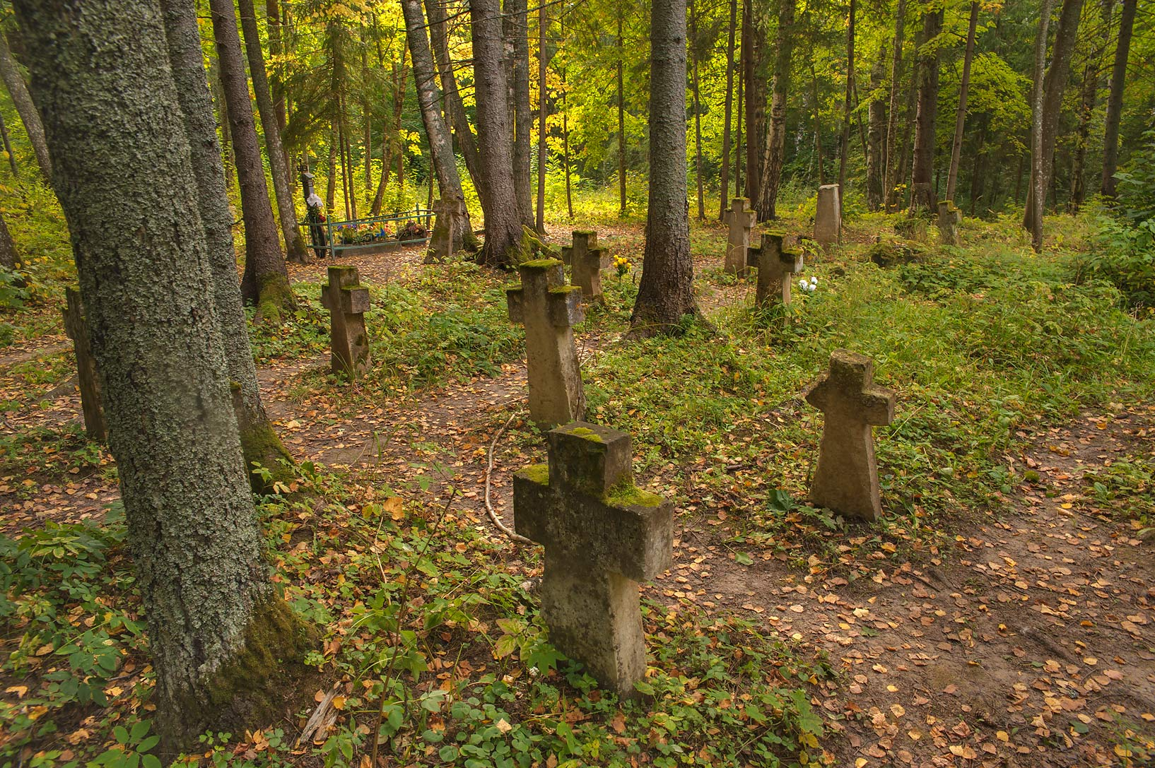 Old stone crosses in cemetery of Holy...Pustyn). Pskov Region, Russia